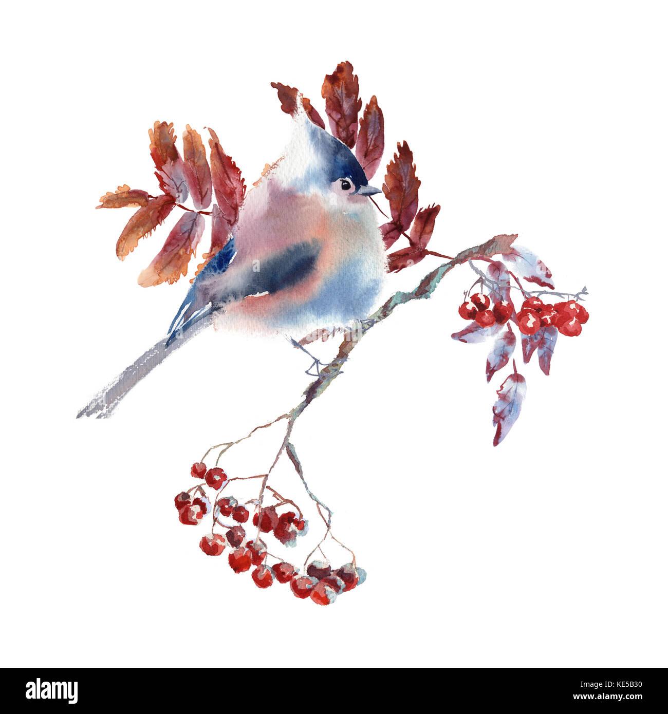 Hand Zeichnen Aquarell Herbst Blatter Und Vogel Ornament Stockfoto
