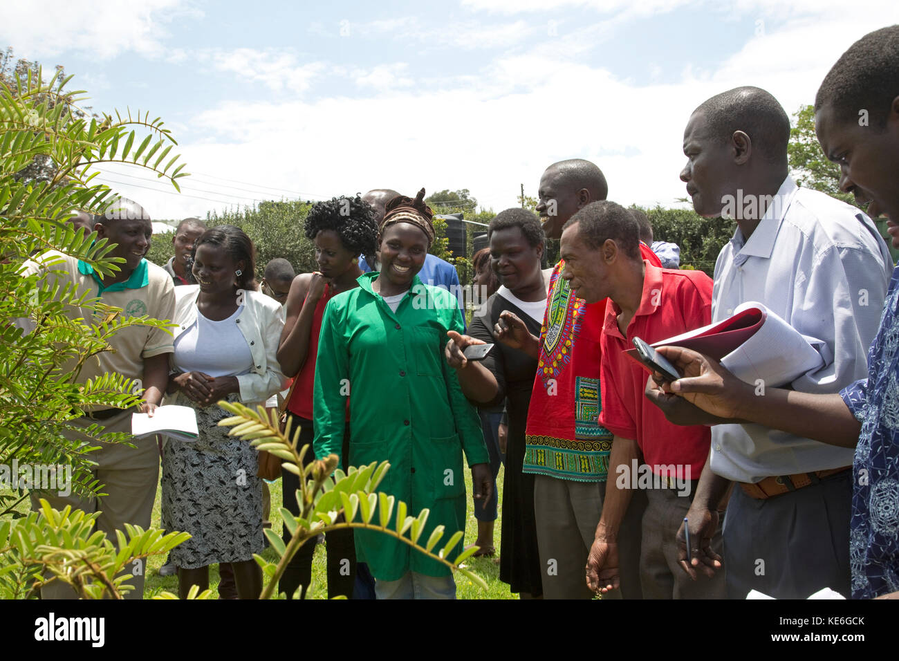 Afrikanische Besuchslehrerinnen Kräutergarten mit Heilpflanzen neu Afrika gilgil Kenia Stockbild