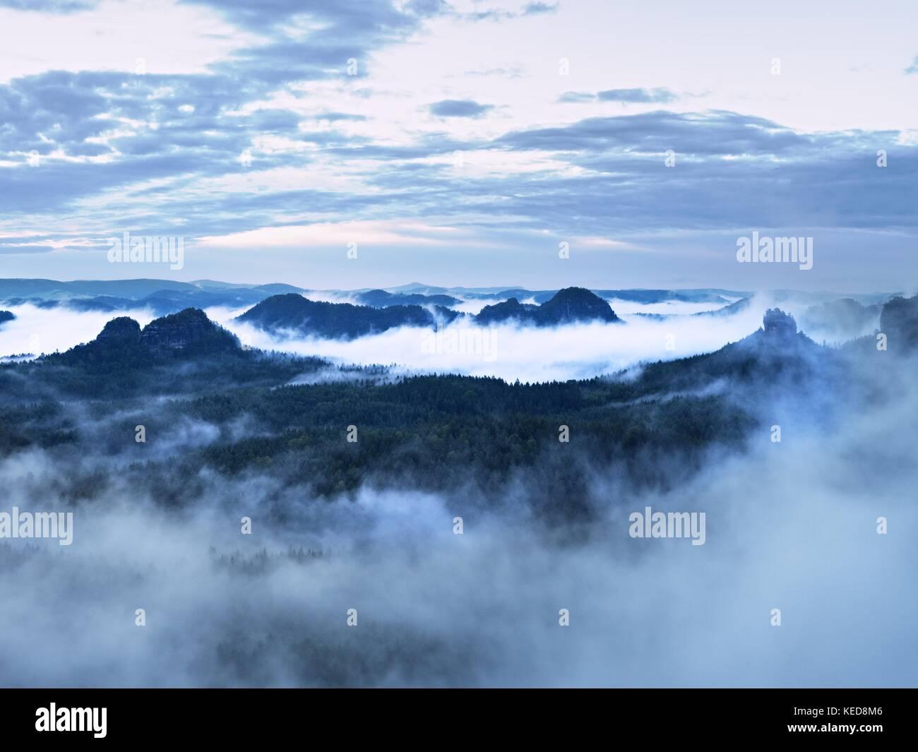 Blue Mist in den Bergen. Sommer Wald nach schweren regnerischen Nacht. baumkronen von Nebel erhöht und stripping Stockbild