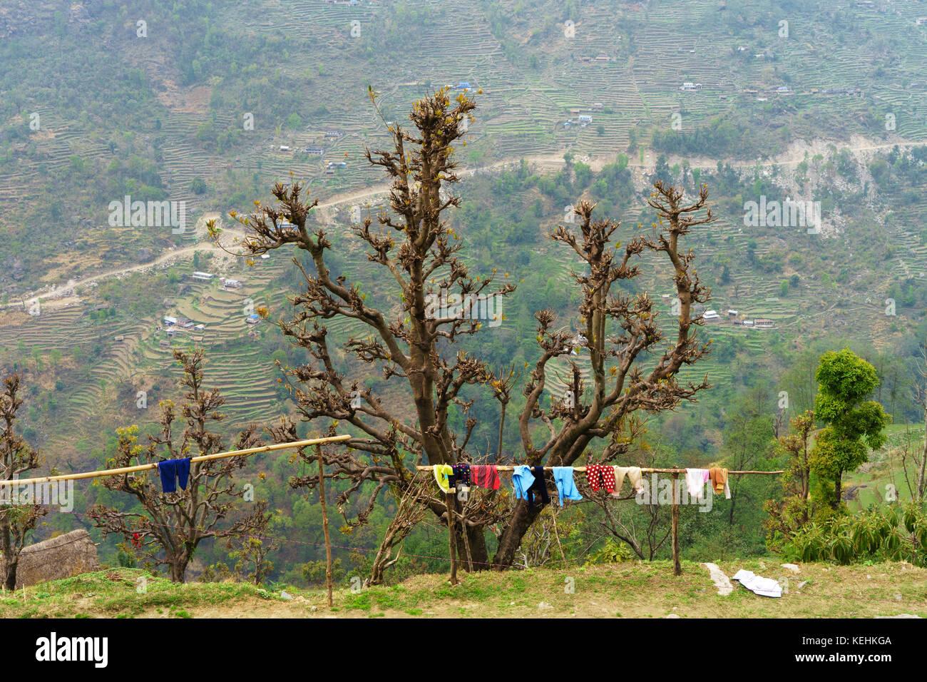 Wäsche trocknen auf eine hölzerne Stange in Landruk, Annapurna region, Nepal. Stockbild