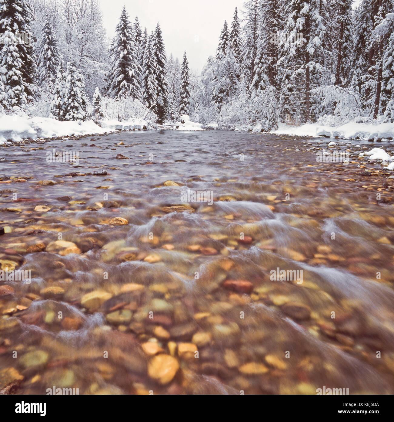 Winterschnee am lost Creek im Swan Valley in der Nähe von Schwanensee, montana Stockbild