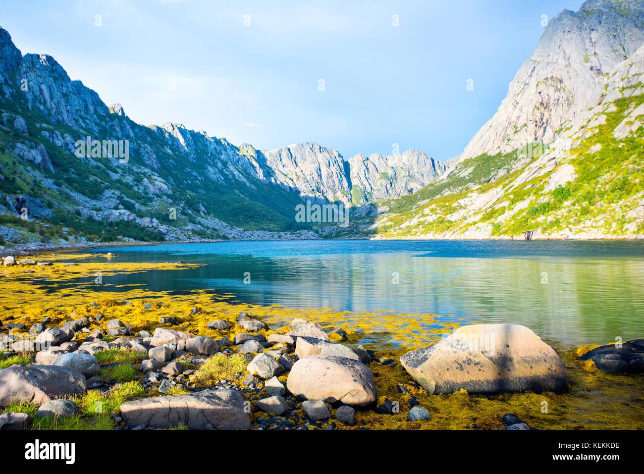 Suchen in der Nähe von Djupfjorden Henningsvær, Lofoten, Norwegen. Stockbild