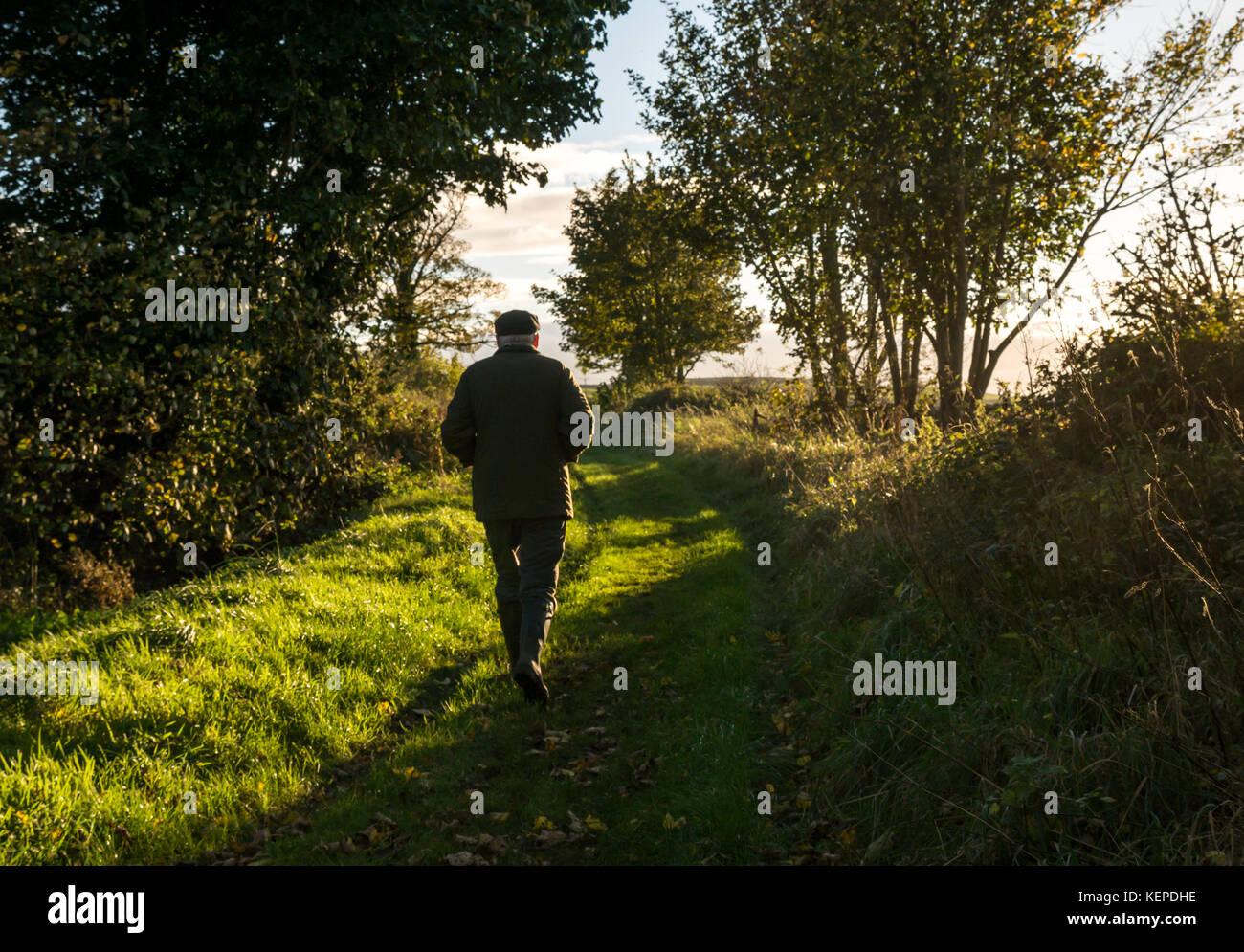 Ältere ältere Mann, Gummistiefel, Jacke und Kappe gehen auf einem Gras weg in der Landschaft mit niedrigen Stockbild