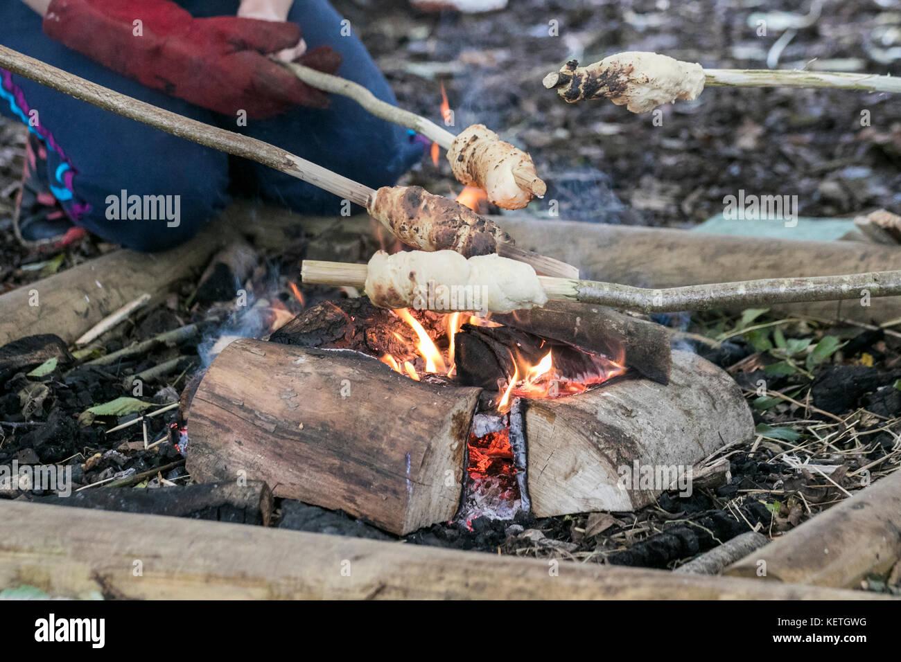 Kinder Kochen im Wald Lagerfeuer, Brockholes Naturschutzgebiet, Lancashire, Großbritannien Stockbild