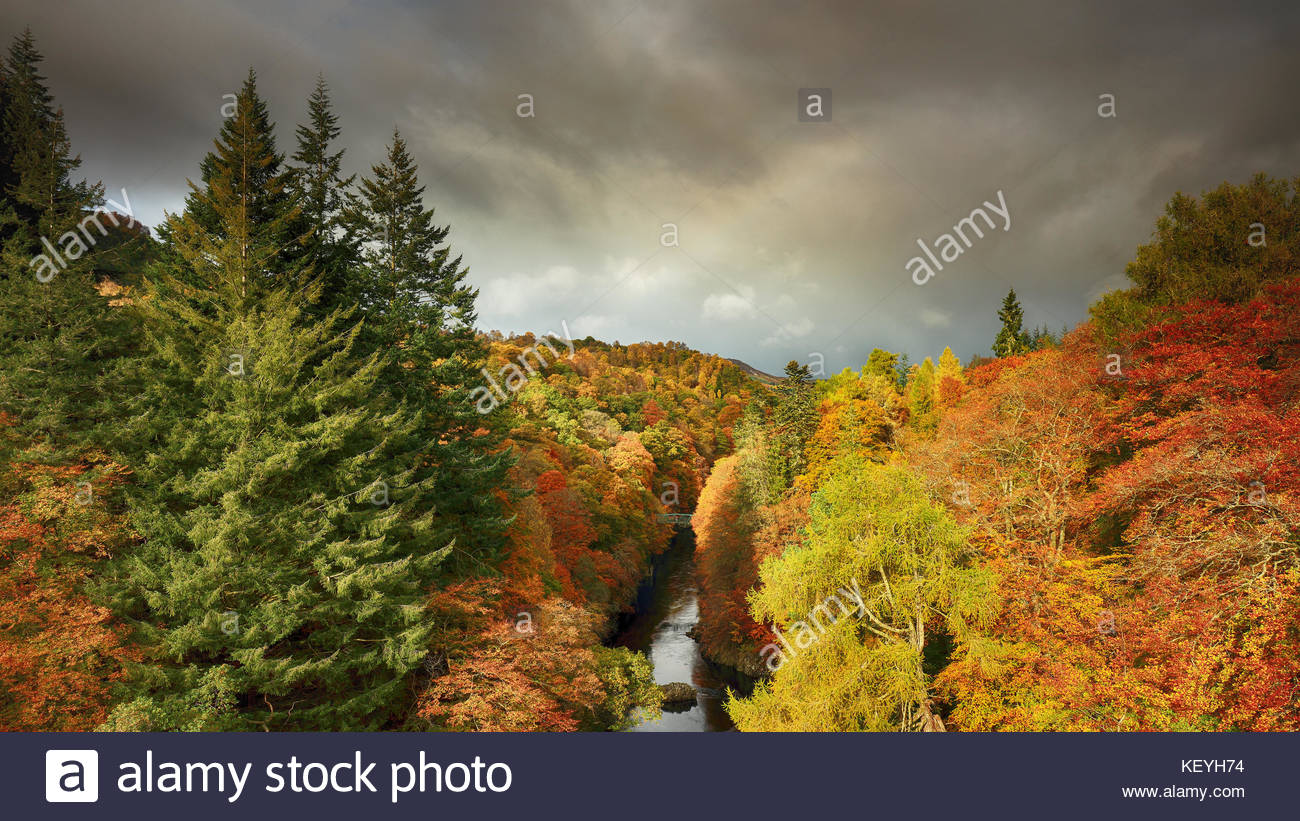 Sunlit durchnässt Bäume mit den Farben der Herbst in voller Blüte von Killiecrankie, mit Blick auf den Fluss Garry. Stockfoto