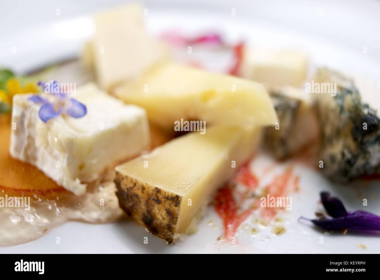 Viele verschiedene Käse auf einem weißen Tisch. Stockbild