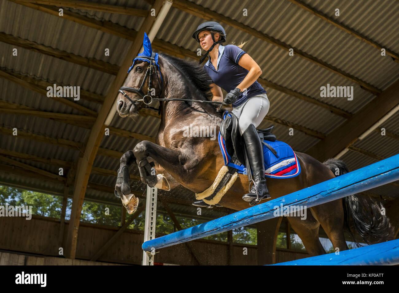 Junge Frau auf Pferd Kreuzung Hindernis auf Kurs Stockbild