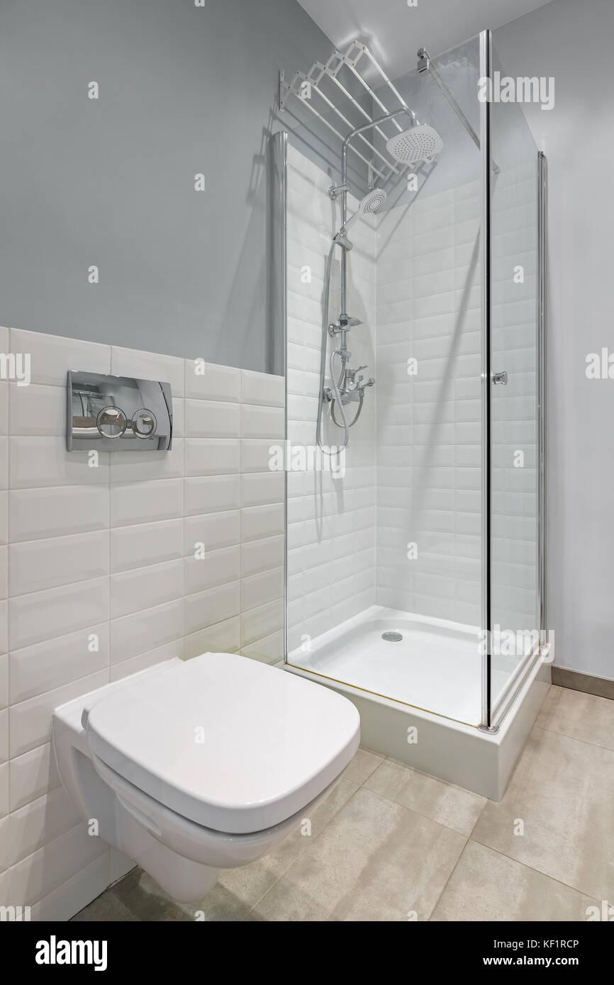 In Grau und Weiß gehaltenes Badezimmer mit WC, Dusche und ...