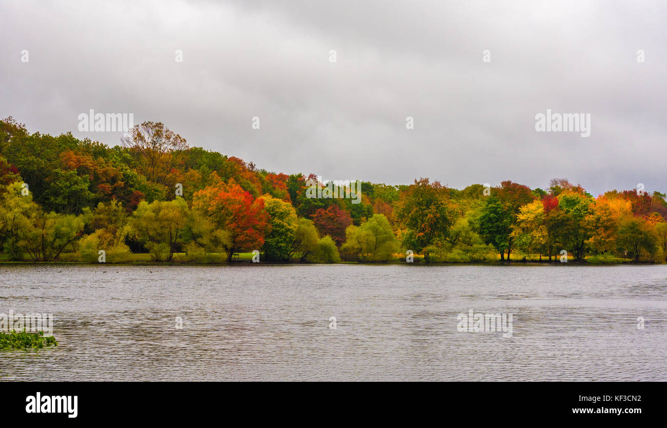 Turkey Swamp Park Stockfotos & Turkey Swamp Park Bilder - Alamy