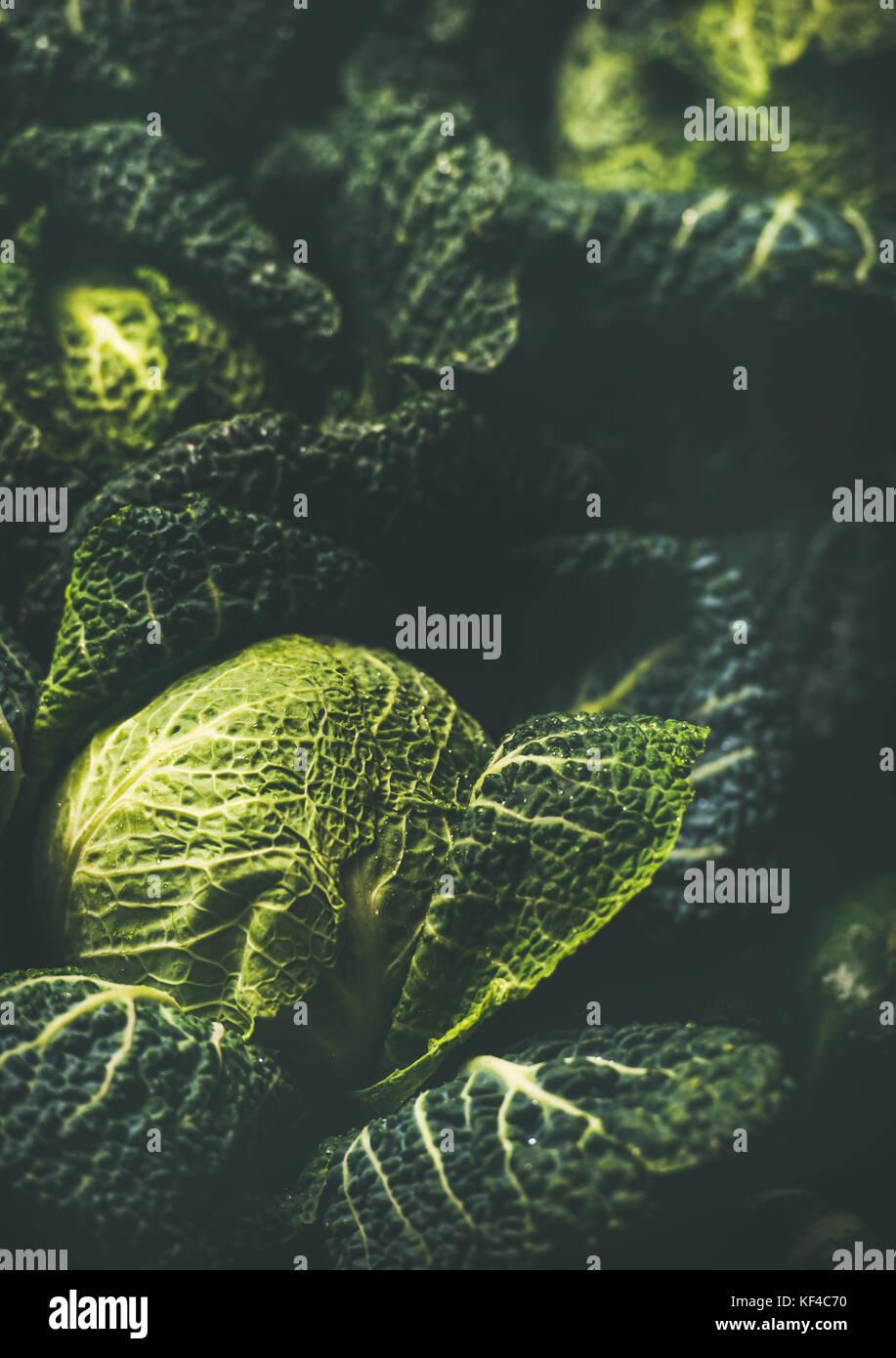 Rohe frische Grünkohl Textur und Hintergrund, vertikalen Zusammensetzung Stockbild