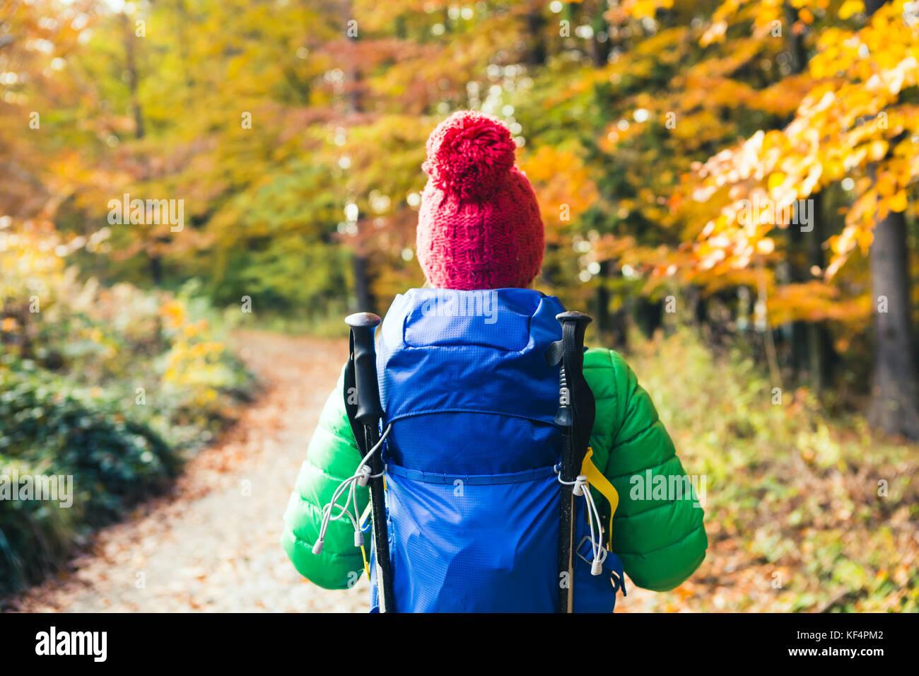 Wandern Frau mit Rucksack auf der Suche nach inspirierenden Herbst goldene Wälder. Fitness Reisen und gesunden Stockbild