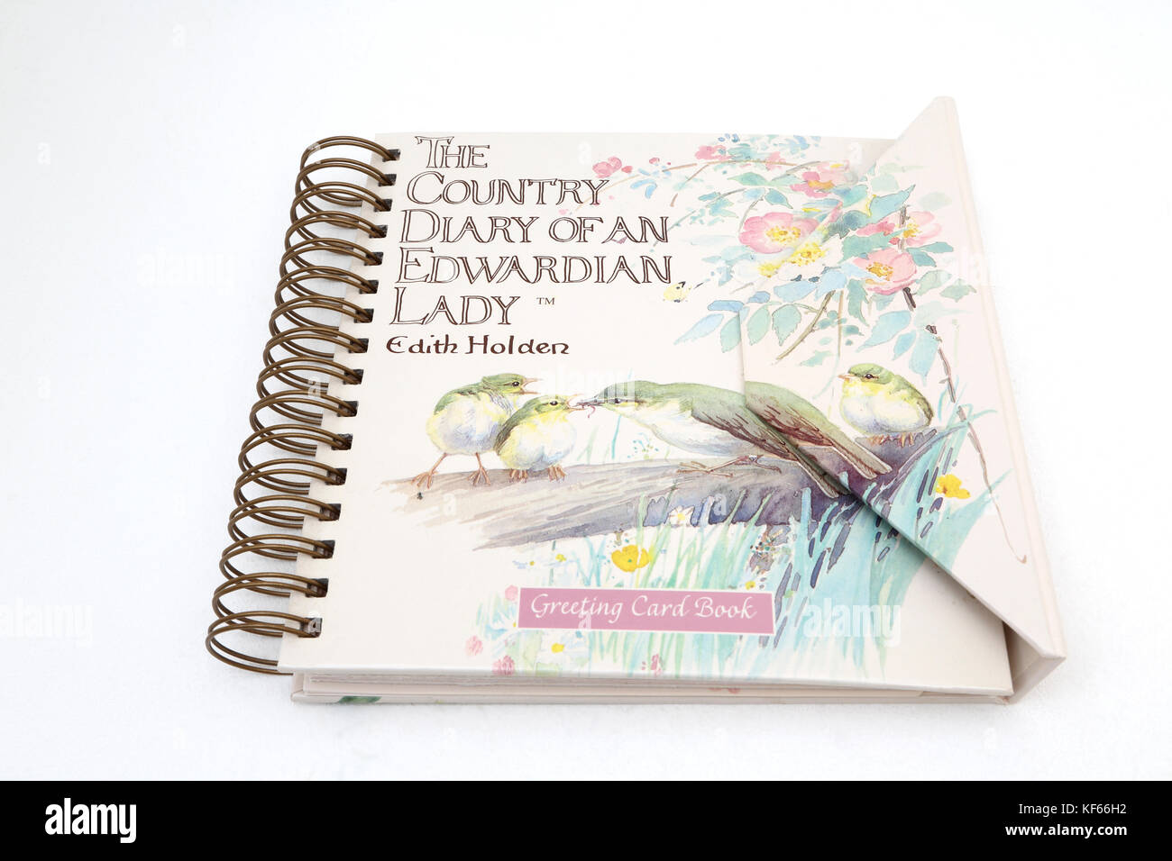 Grußkarte Buchen Sie ein Land Tagebuch für eine Edwardian Lady Stockbild