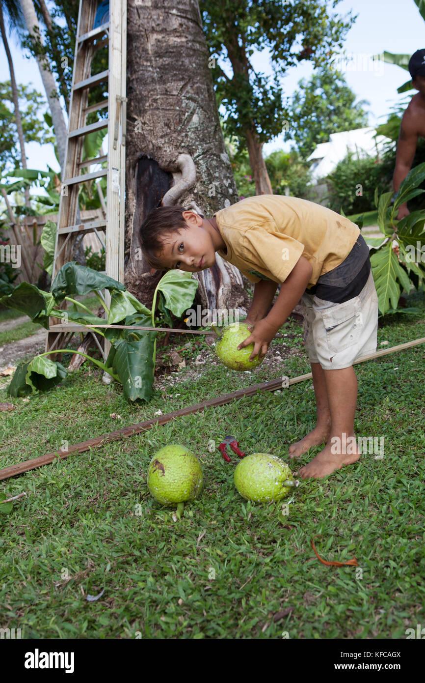 Französisch Polynesien Moorea. Dushan Holding eine Brotfrucht. Stockbild