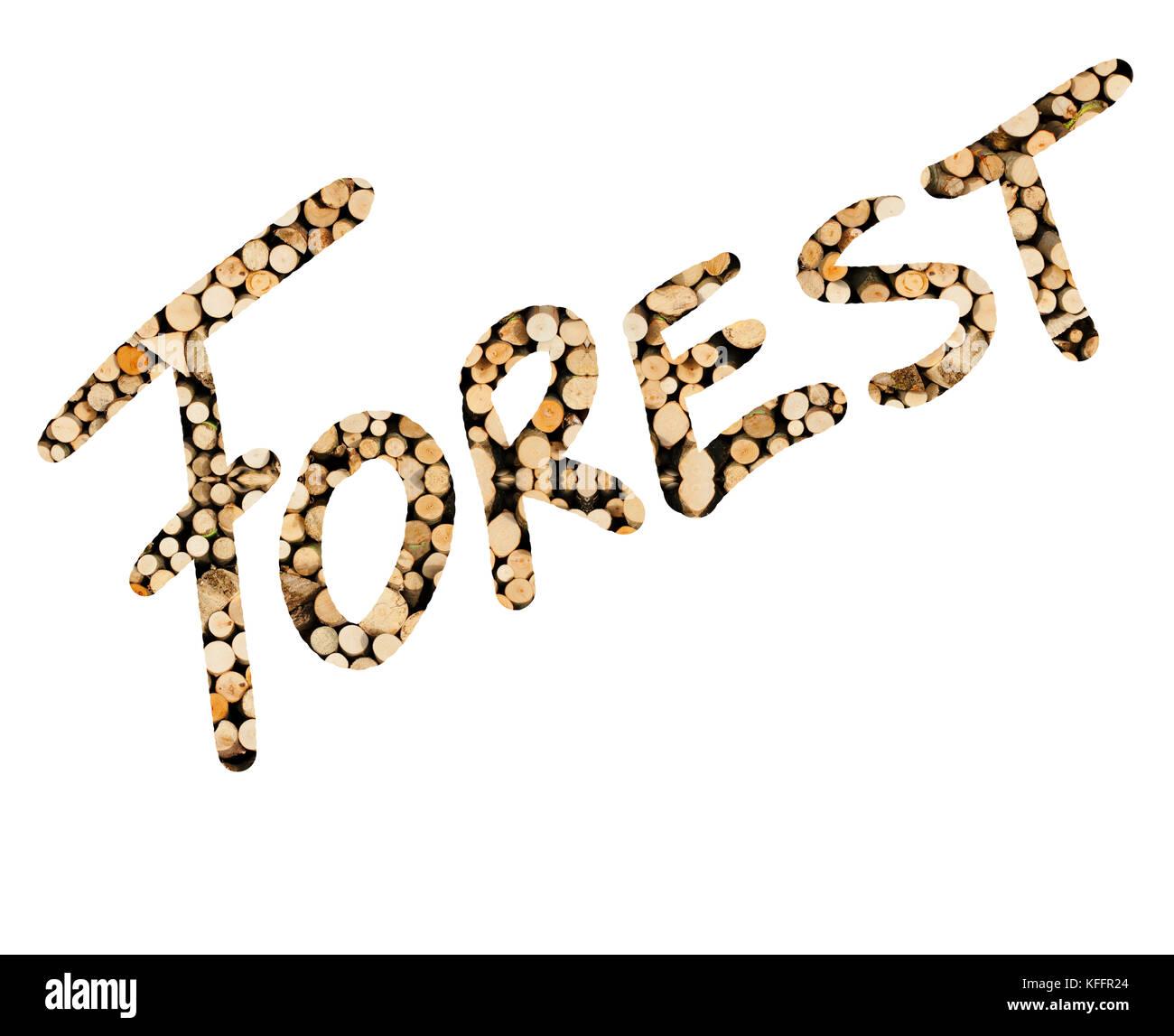 Das johanniskraut Wald aus holzrollen geschrieben, dargestellt Stockbild