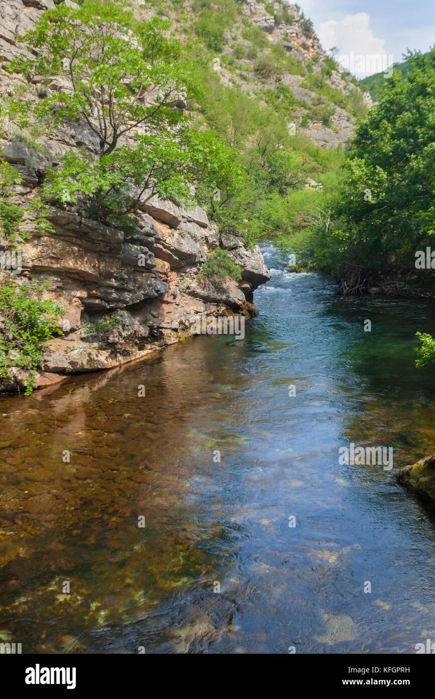Schlucht des Flusses Krcic in Kroatien Stockbild