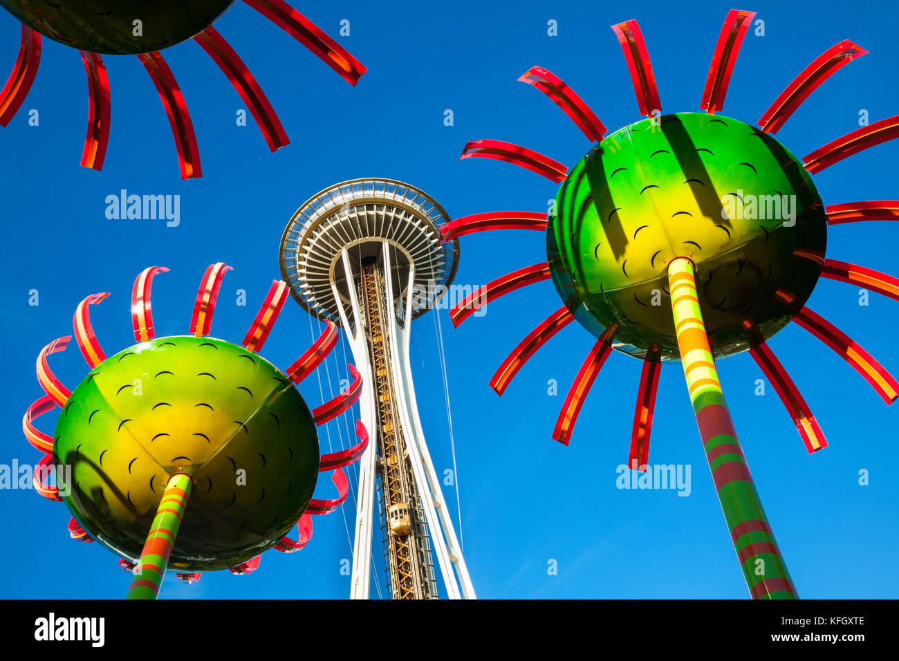 WA 141445-00... WASHINGTON - Anzeige Sonic Bloom mit der Space Needle in Seattle Center entfernt. Stockfoto