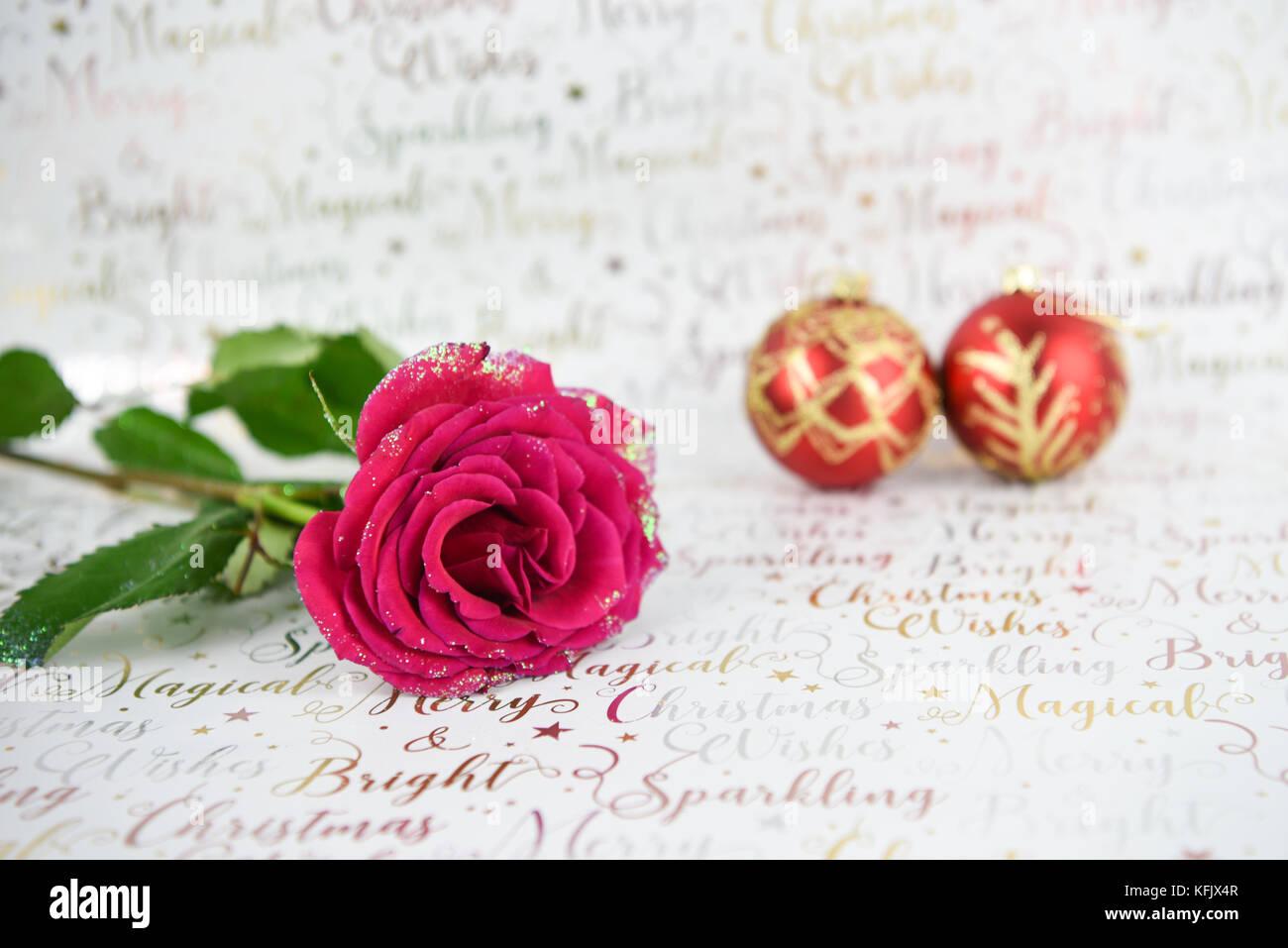 Weihnachten Fotografie Bild Mit Glitter Red Rose Blume Und Rot Gold