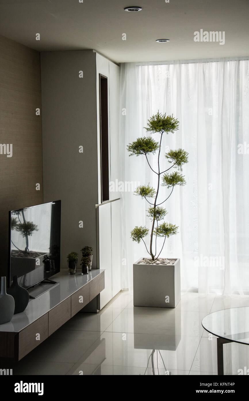 Eine Dekoration Pflanze in eckigen Topf im Wohnzimmer setzen ...