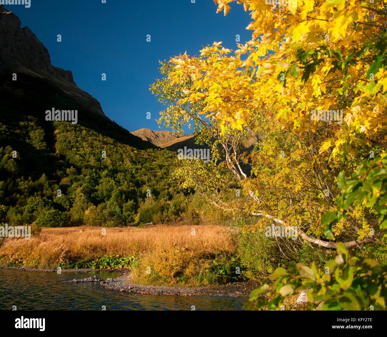 Anfang Herbst am Ufer des Sees kardyvach. Der Rahmen wurde im Herbst ...
