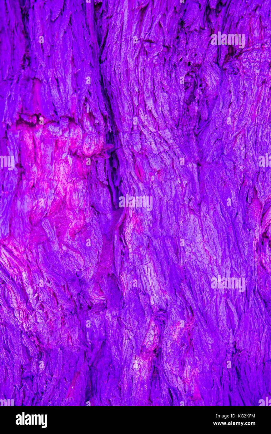 Getönte Rinde. Baumrinde in verschiedenen Farben als Kunst oder ...