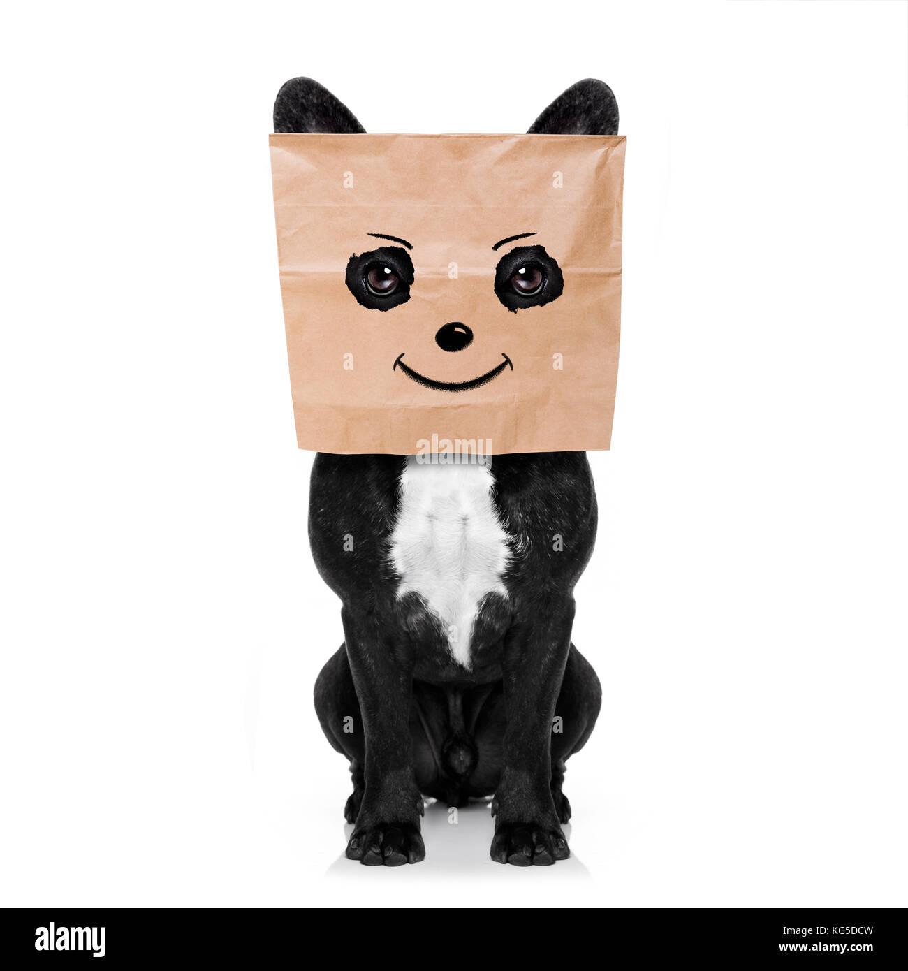 Gerne französische Bulldogge, mit einem Smiley smile Zeichnung, versteckt hinter einer Papiertüte auf Stockbild