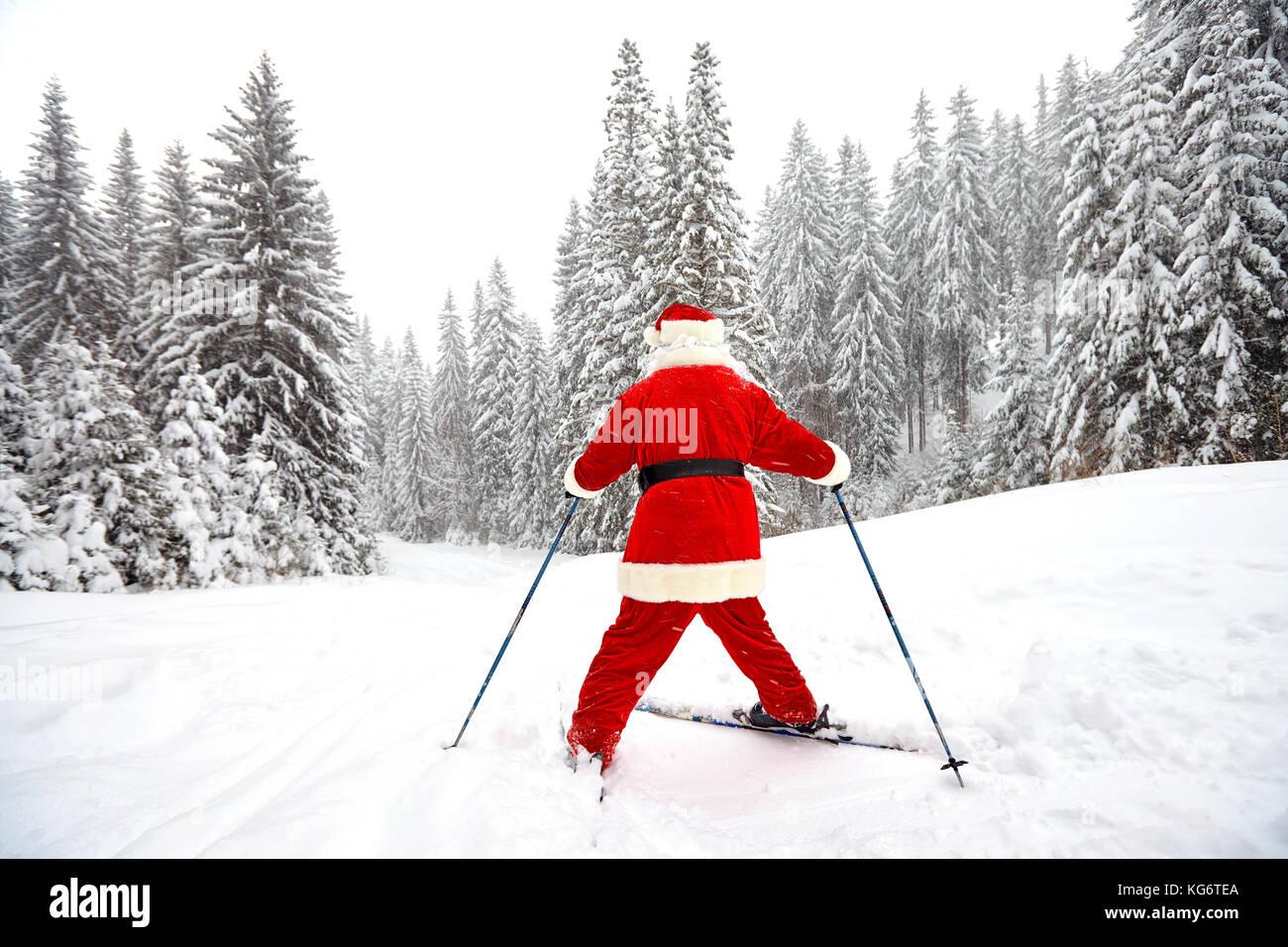 Santa Claus Skifahrer mit Ski in den Wäldern im Winter zu Weihnachten Stockbild