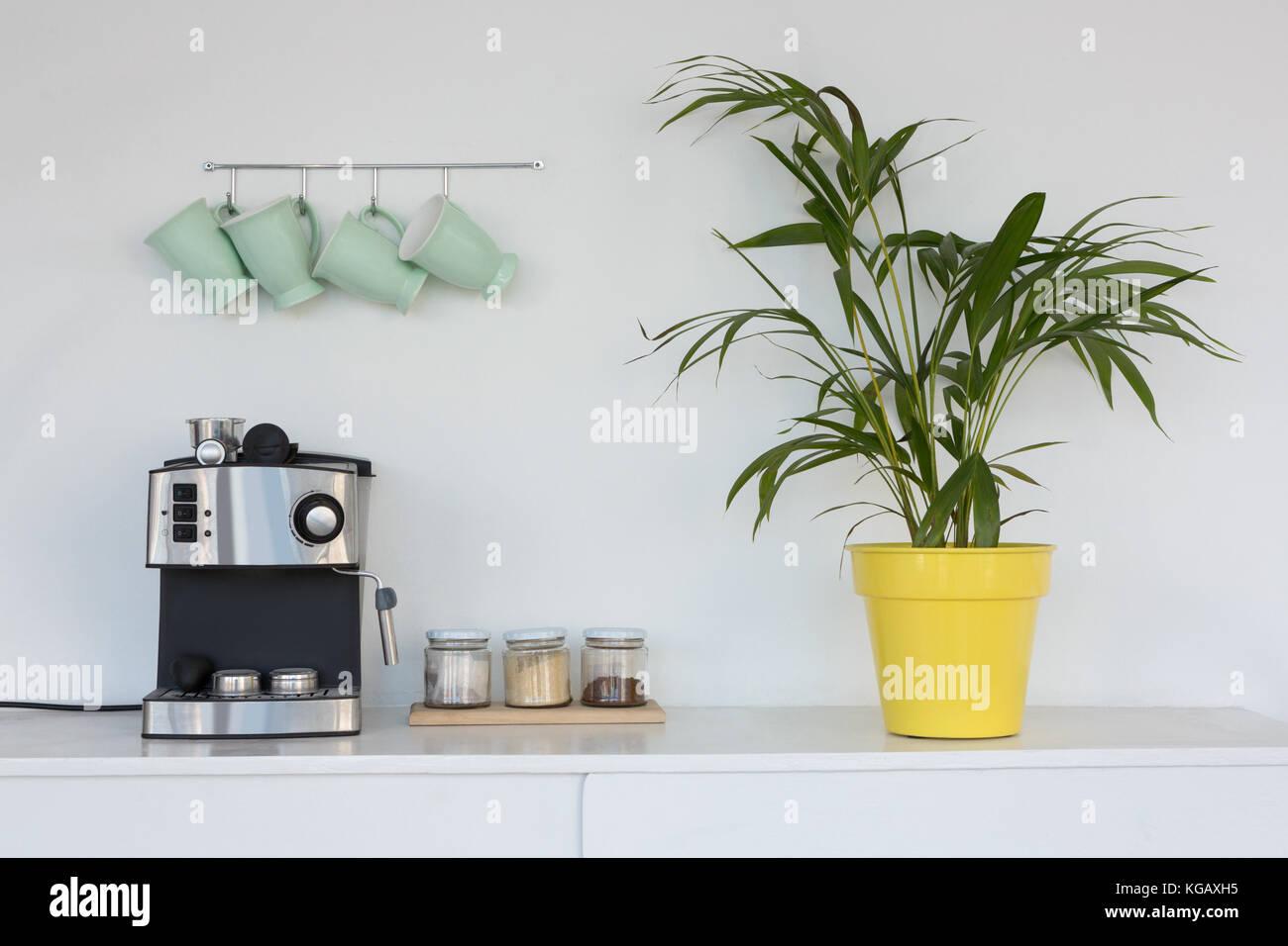 Kaffeemaschine Topfpflanze Und Tassen Auf Haken Gegen Die Wand