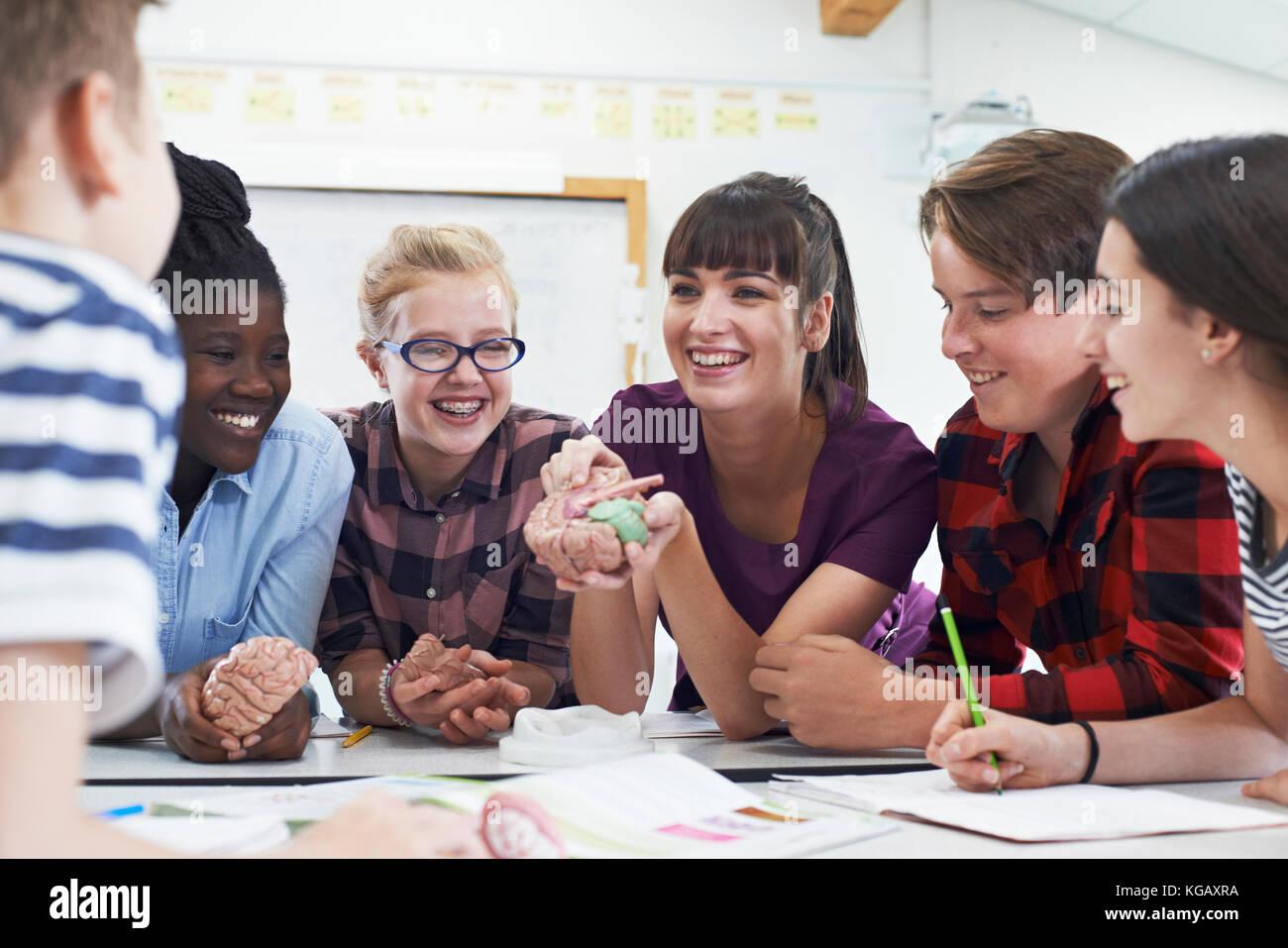 Jugendliche und Schüler mit Lehrer im Biologieunterricht Stockbild