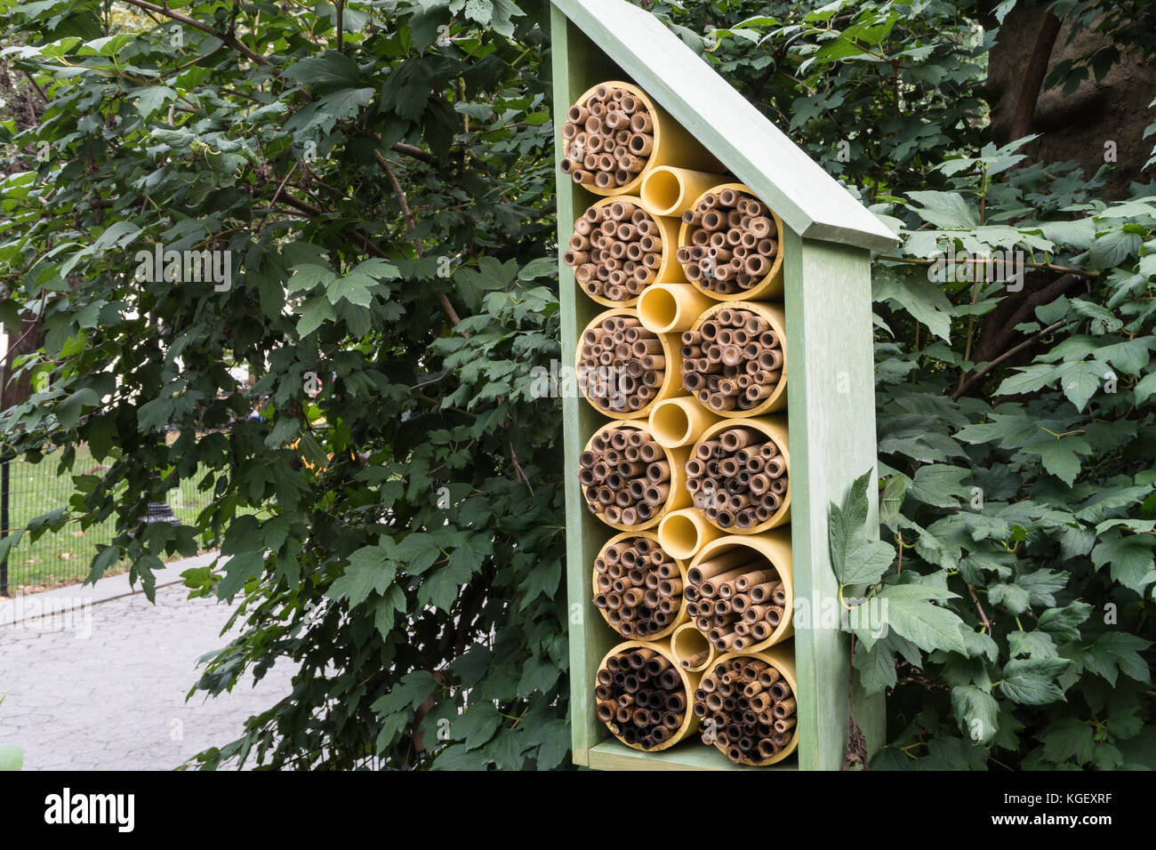 bee house stockfotos bee house bilder alamy. Black Bedroom Furniture Sets. Home Design Ideas