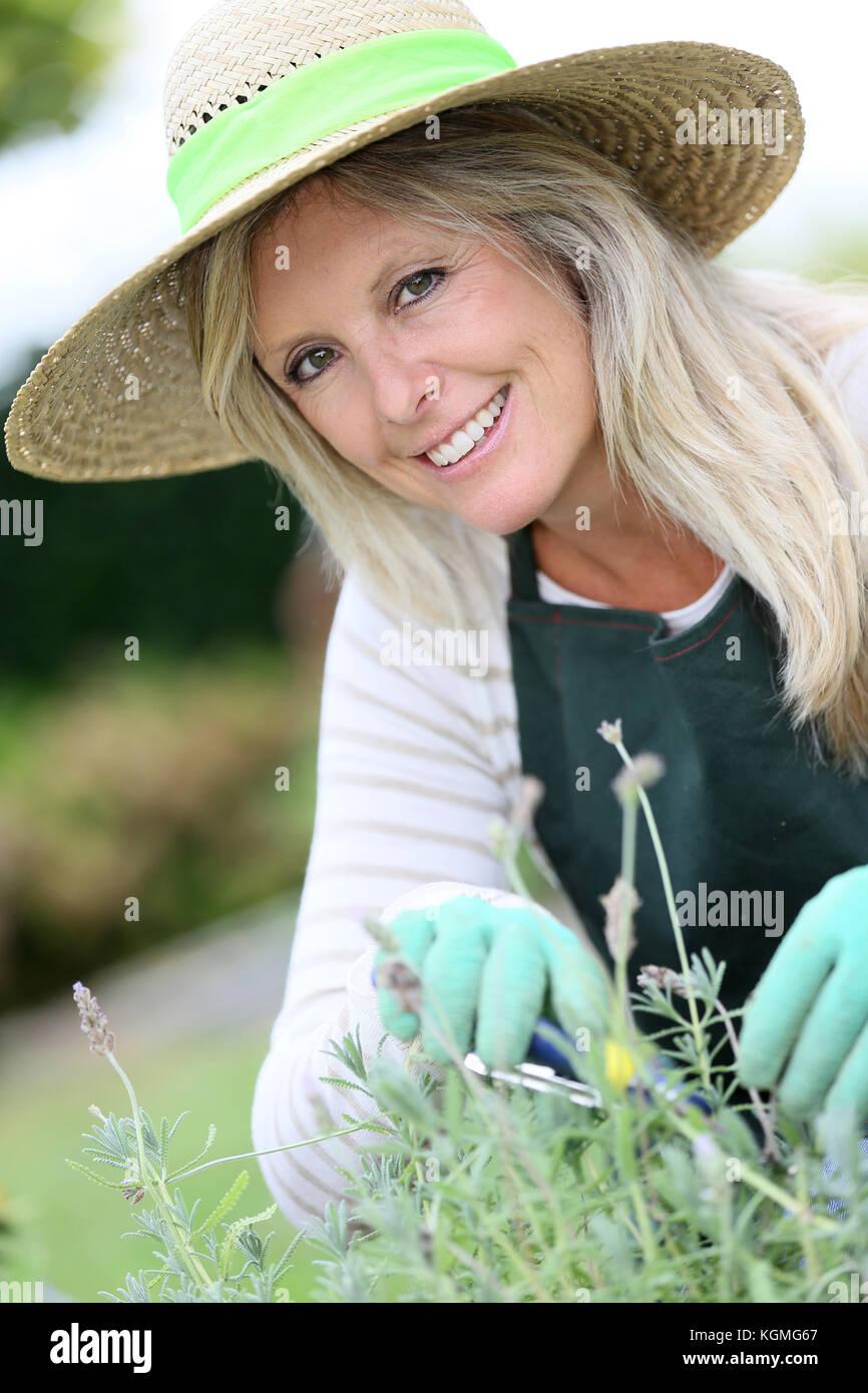 Lächelnde Frau mit Hut Gartenarbeit aromatische Pflanzen Stockbild