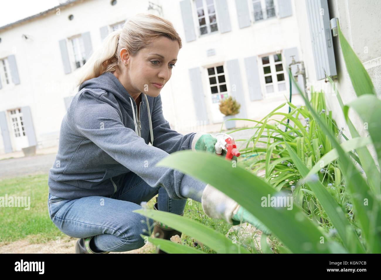 insecticide stockfotos insecticide bilder alamy. Black Bedroom Furniture Sets. Home Design Ideas