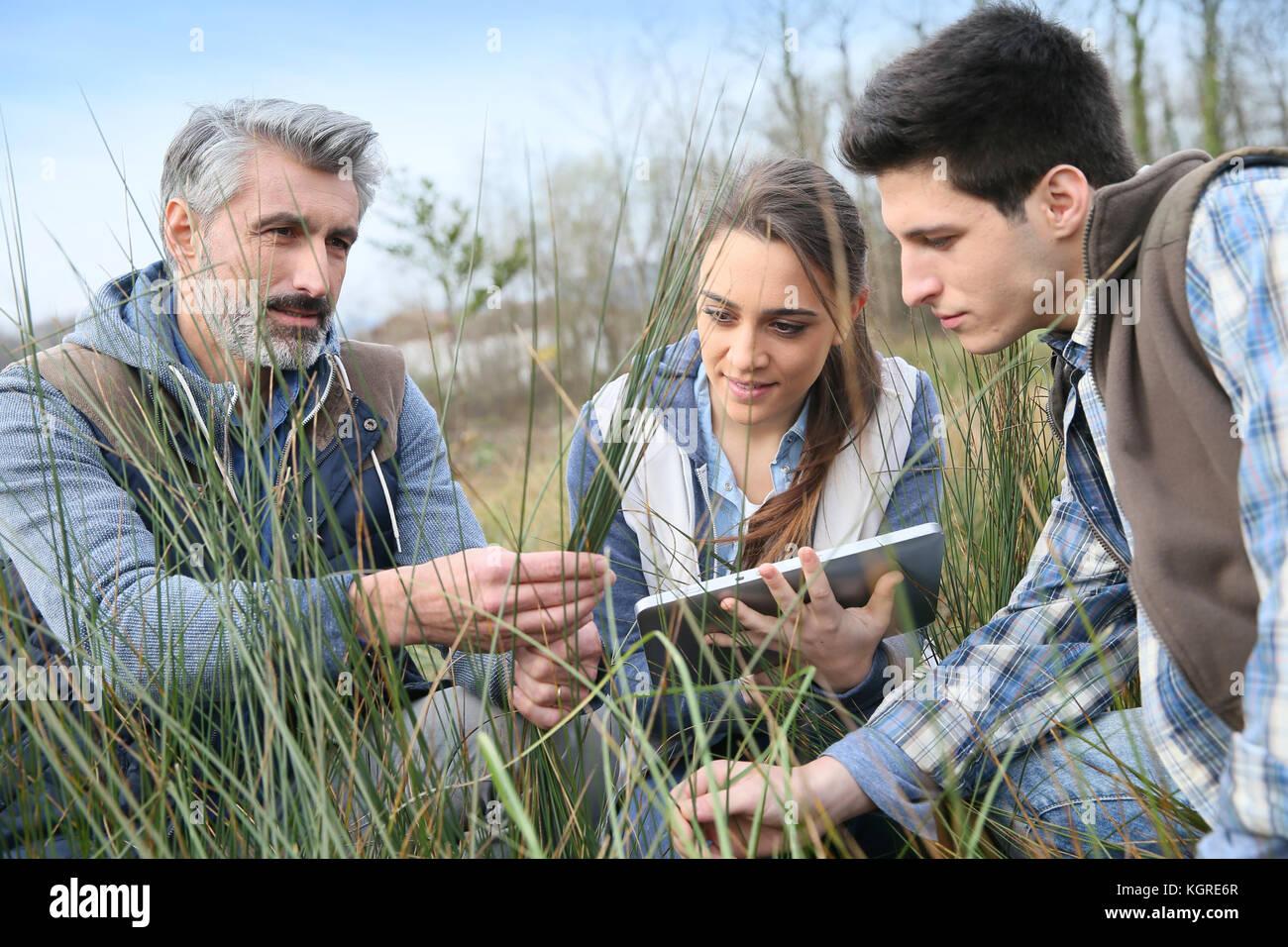 Lehrer mit Schülern in Agronomie mit Blick auf die Vegetation Stockbild