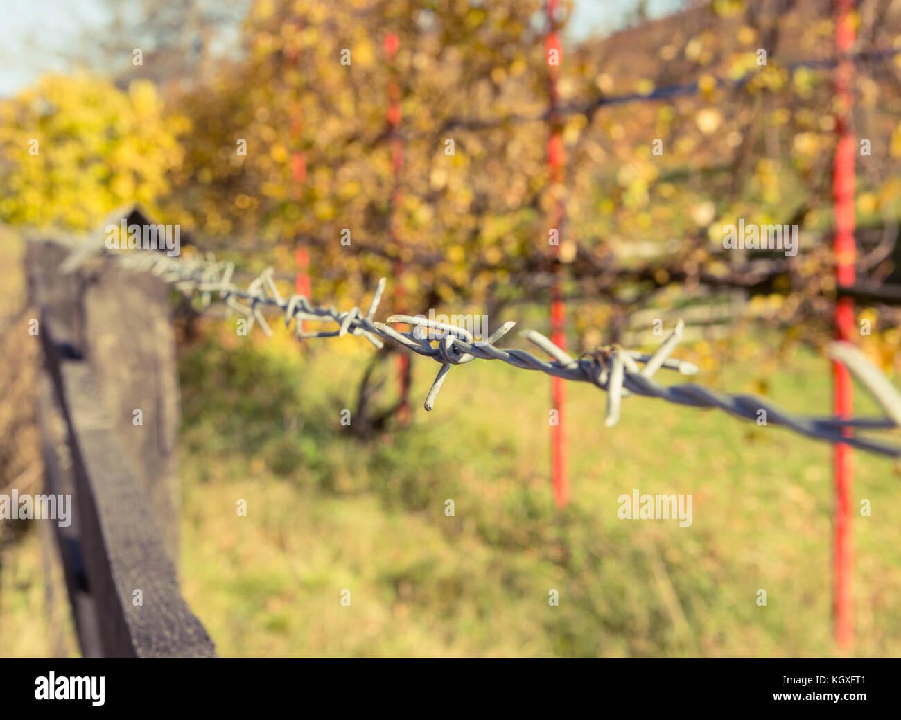 Ziemlich Vorderansicht Des Stacheldrahtzauns Bilder - Der Schaltplan ...