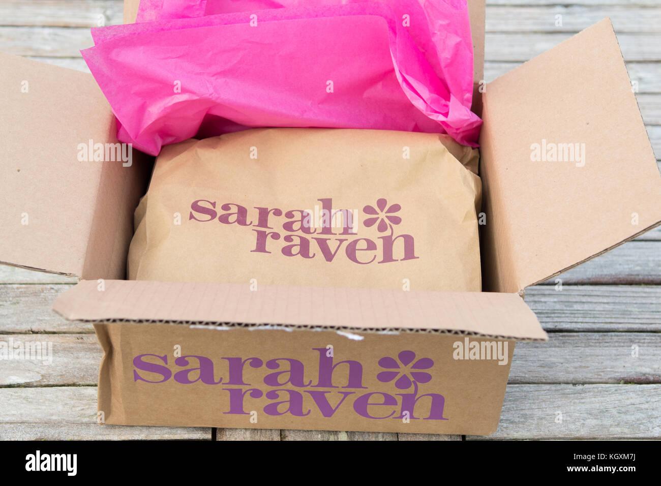 Online Glühlampe Lieferung von Sarah raven Stockbild