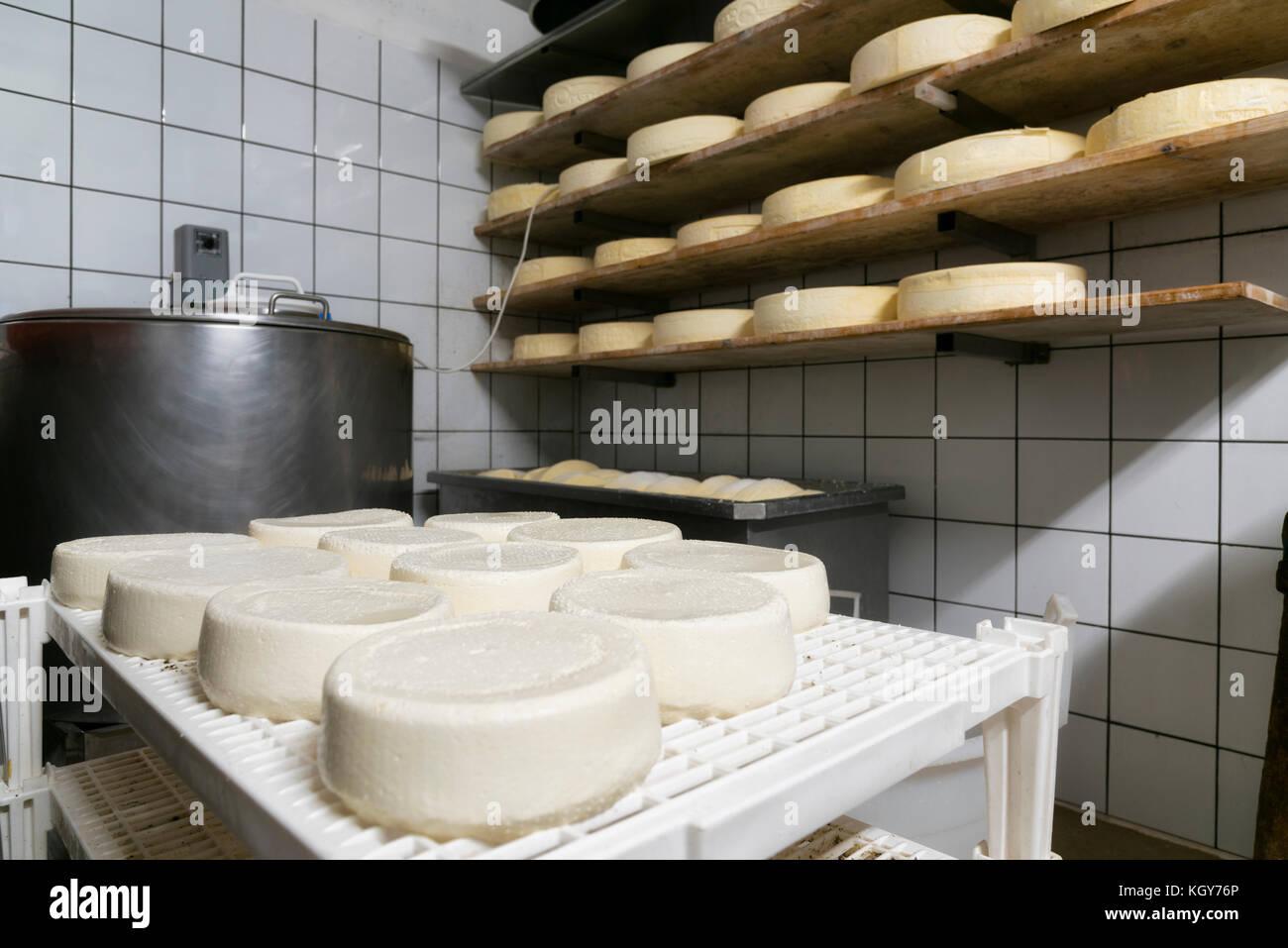 Handgefertigte italienische Käse Produktion in Mountain Farm Stockbild