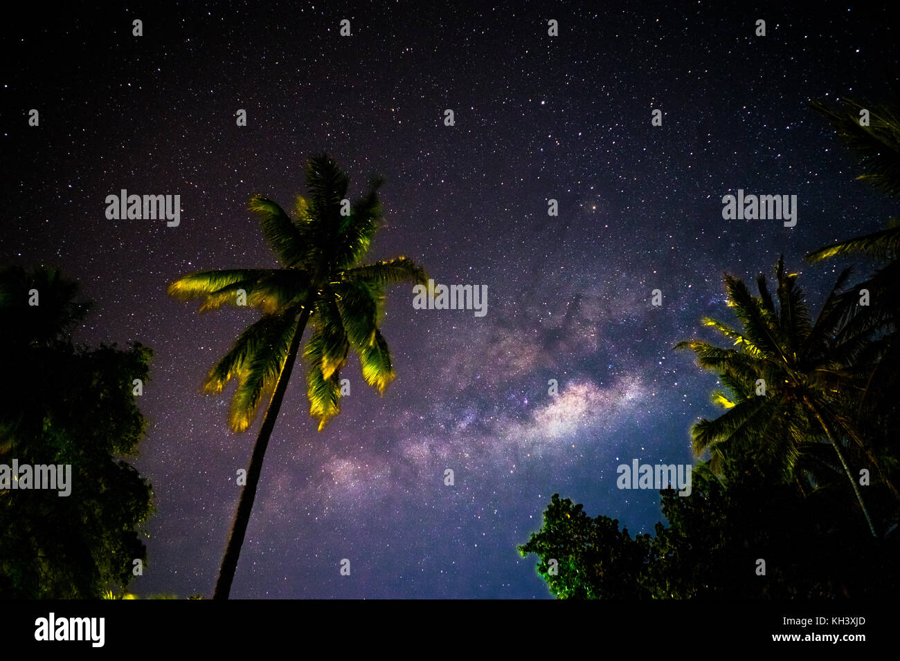 Milkyway hinter Palmen in Indonesien Stockbild