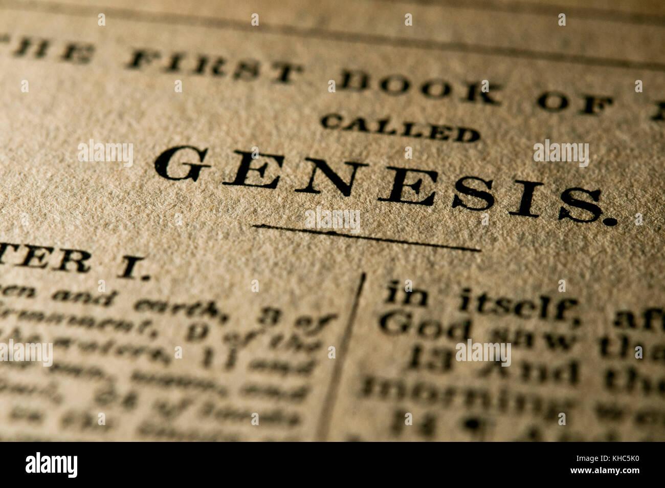 Nahaufnahme der Heiligen Bibel Seite der Genesis Stockbild