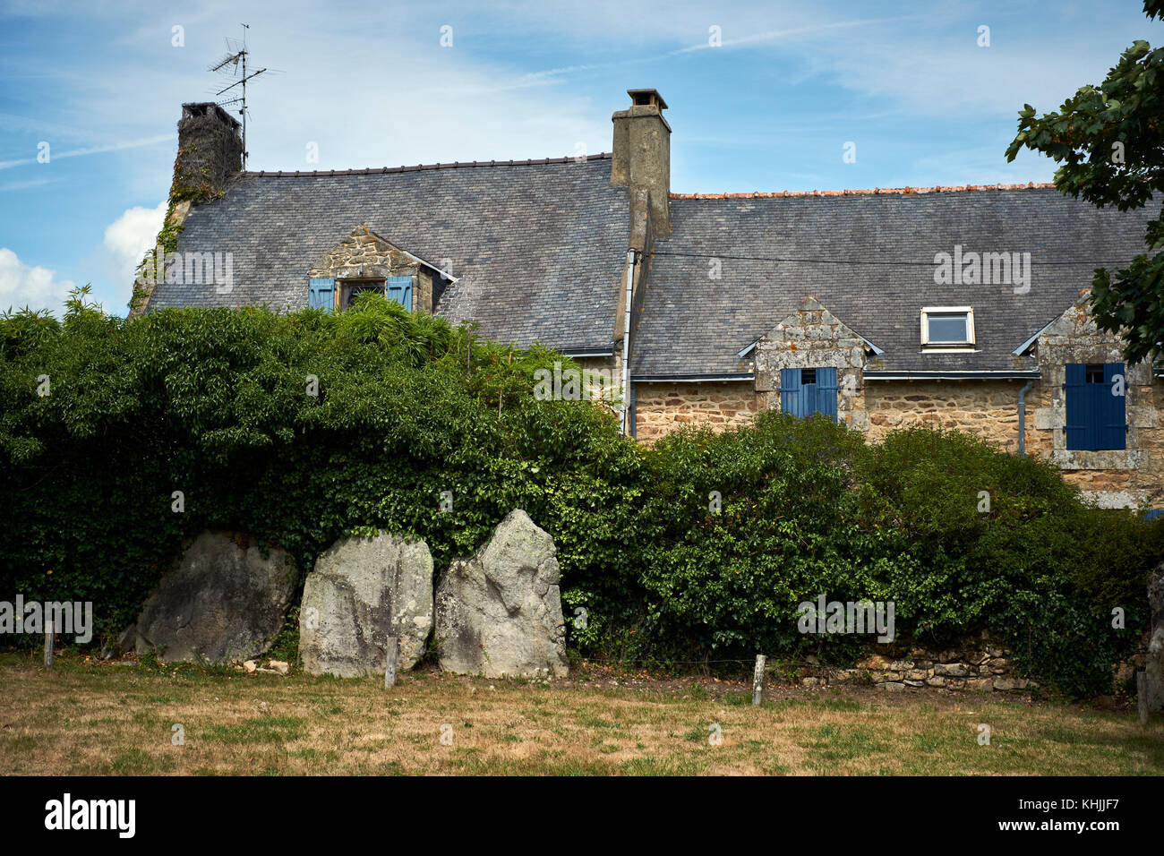Standing Stones auf der Ile aux Moines in den Golfe du Morbihan Bretagne Frankreich. Stockbild