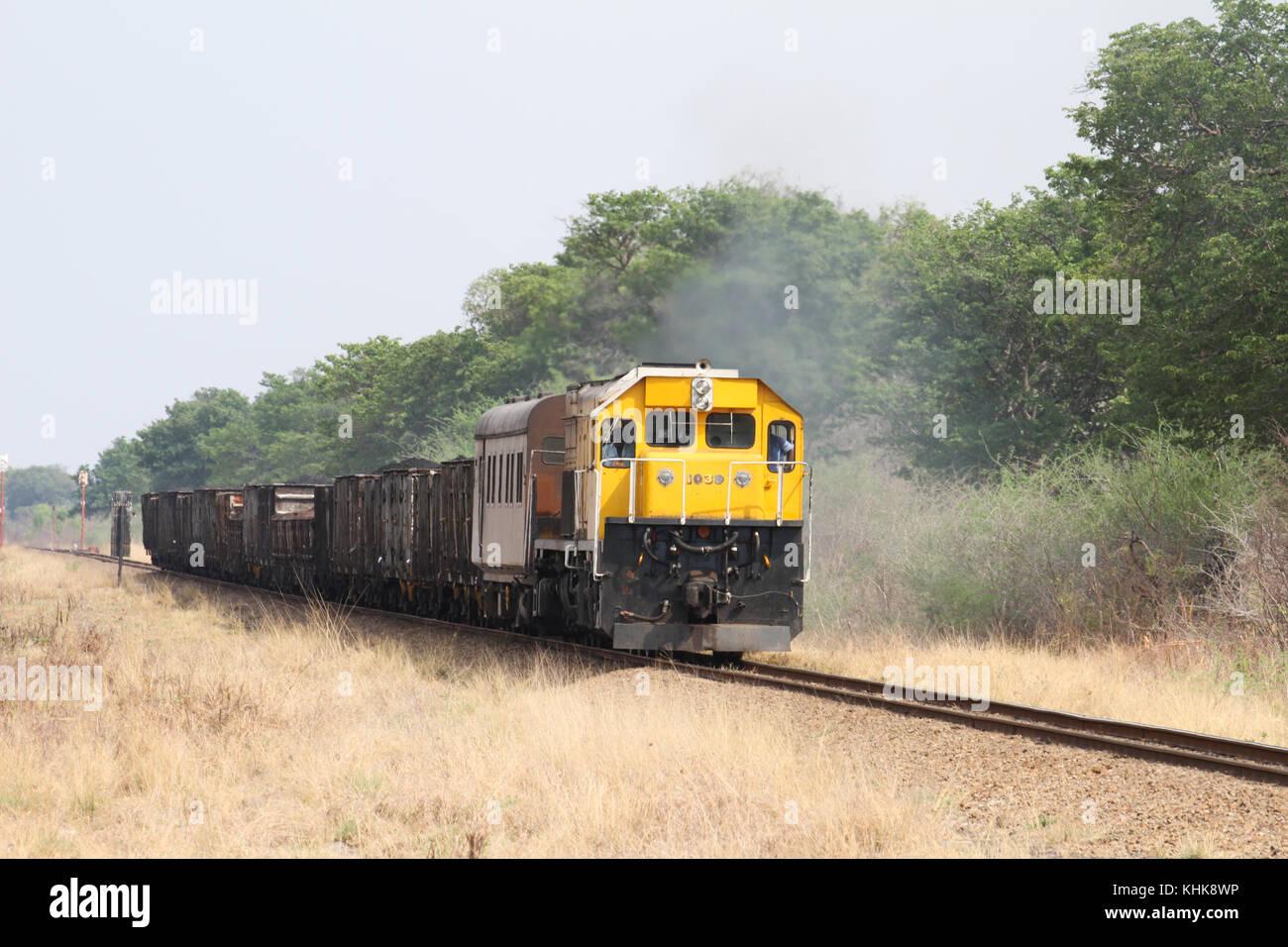 HWANGE, Simbabwe-Am 19. Oktober. Ein richtung Süden gute Zug macht es Weg durch den Hwange National Park nach Bulawayo, Stockfoto