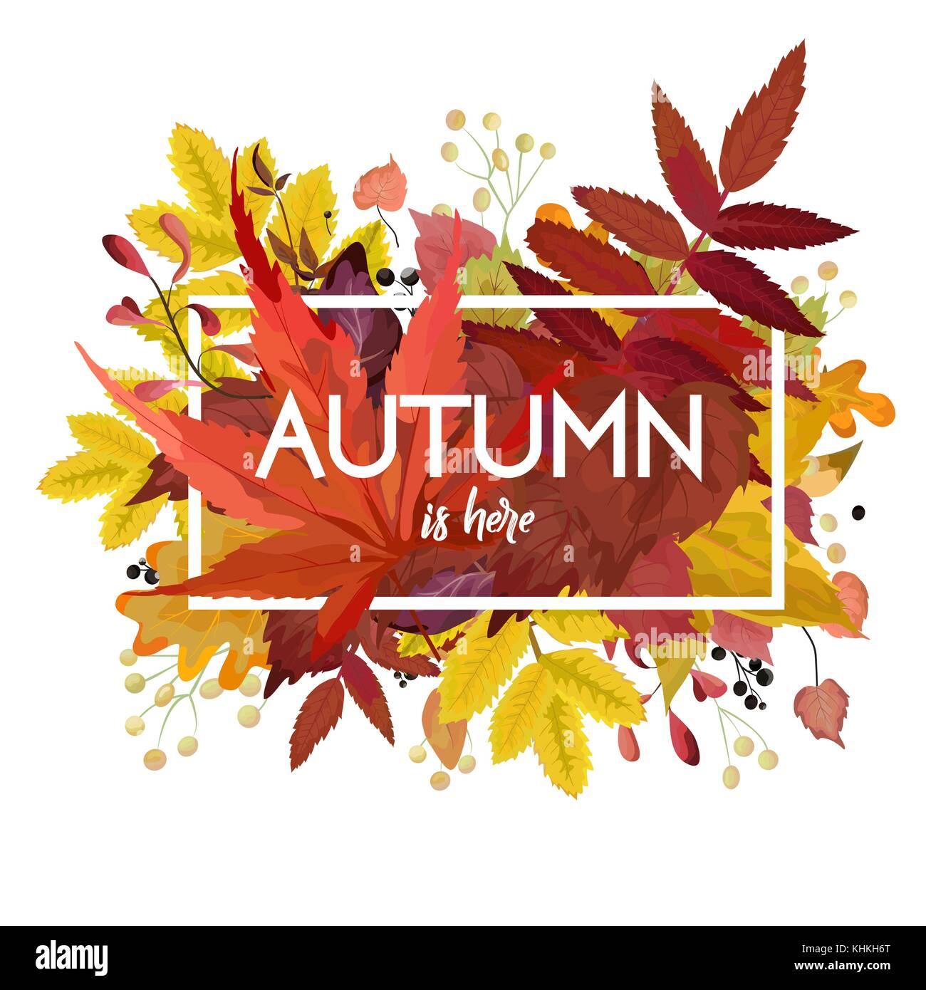 Herbst Vektor Blumen Aquarell Stil Card Design Grenze Rahmen Bunte