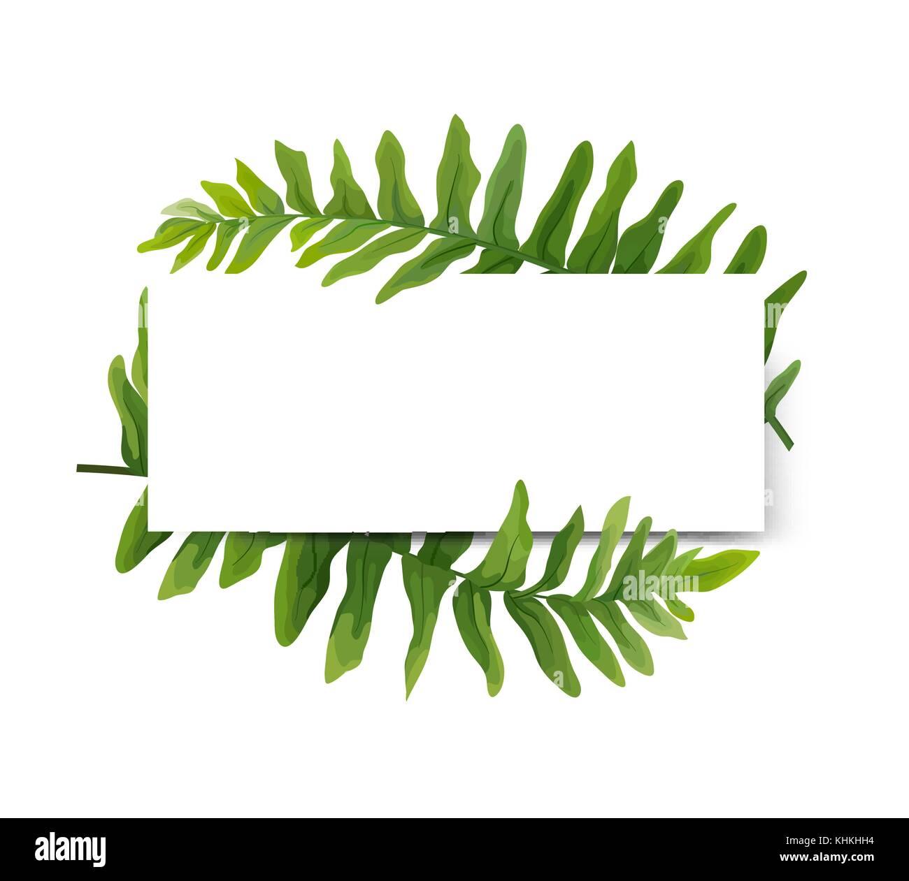 floral modern vector card design gr n deutsch farn wedel bl tter elegante gr n wald kranz rand. Black Bedroom Furniture Sets. Home Design Ideas