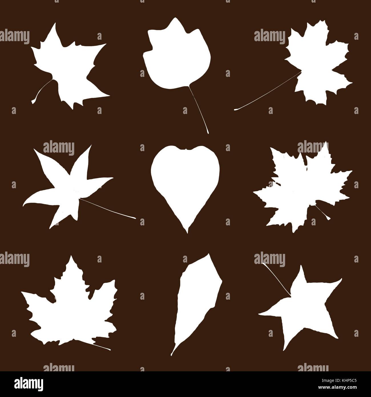 Verschiedene Blatter Auf Den Braunen Hintergrund Schneiden Herbst