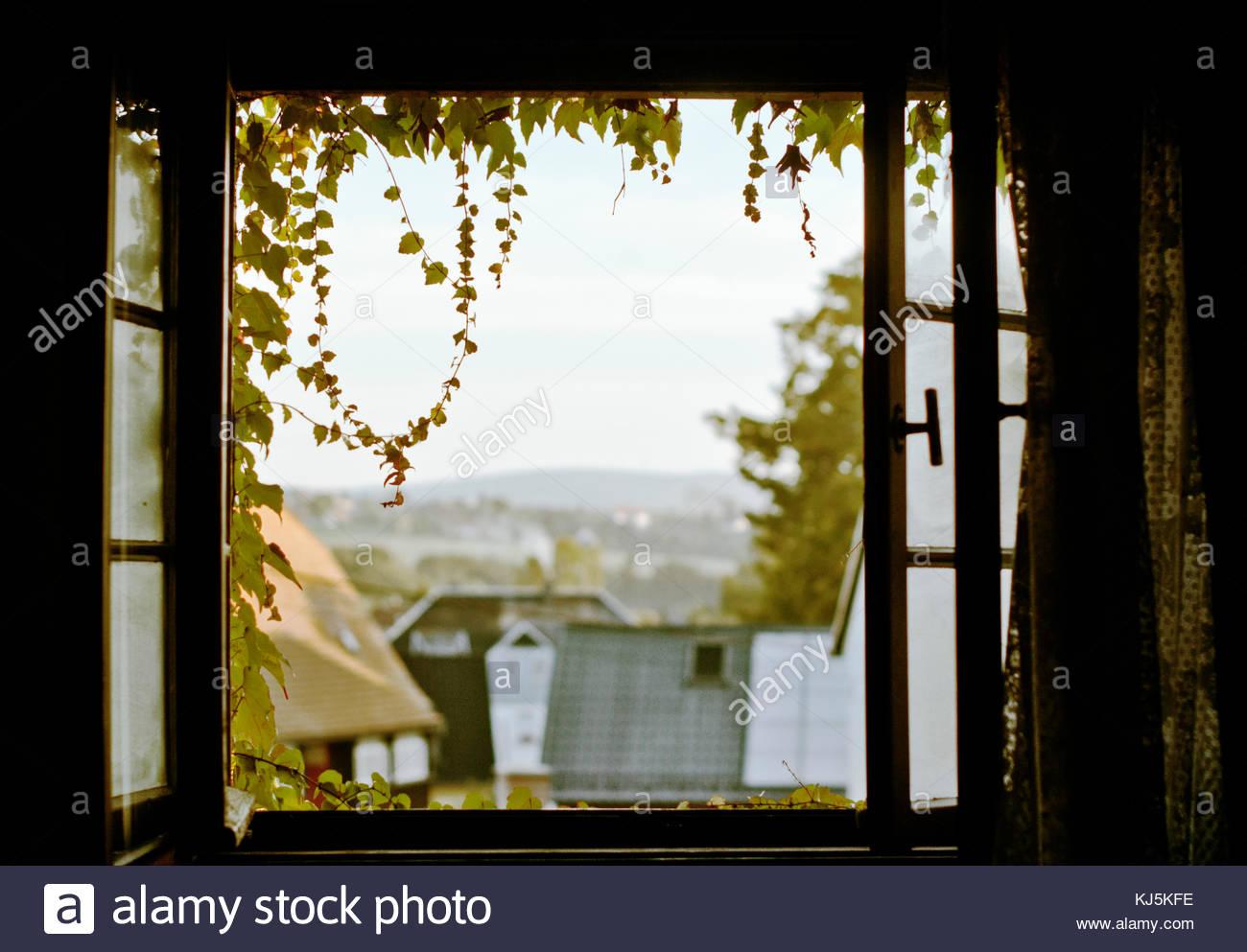 Blick durch ein offenes fenster stockfoto bild 166082210 - Braunen durch fenster ...
