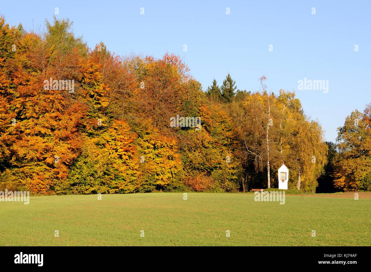 Herbstliche Landschaft mit Bildstock Stockbild