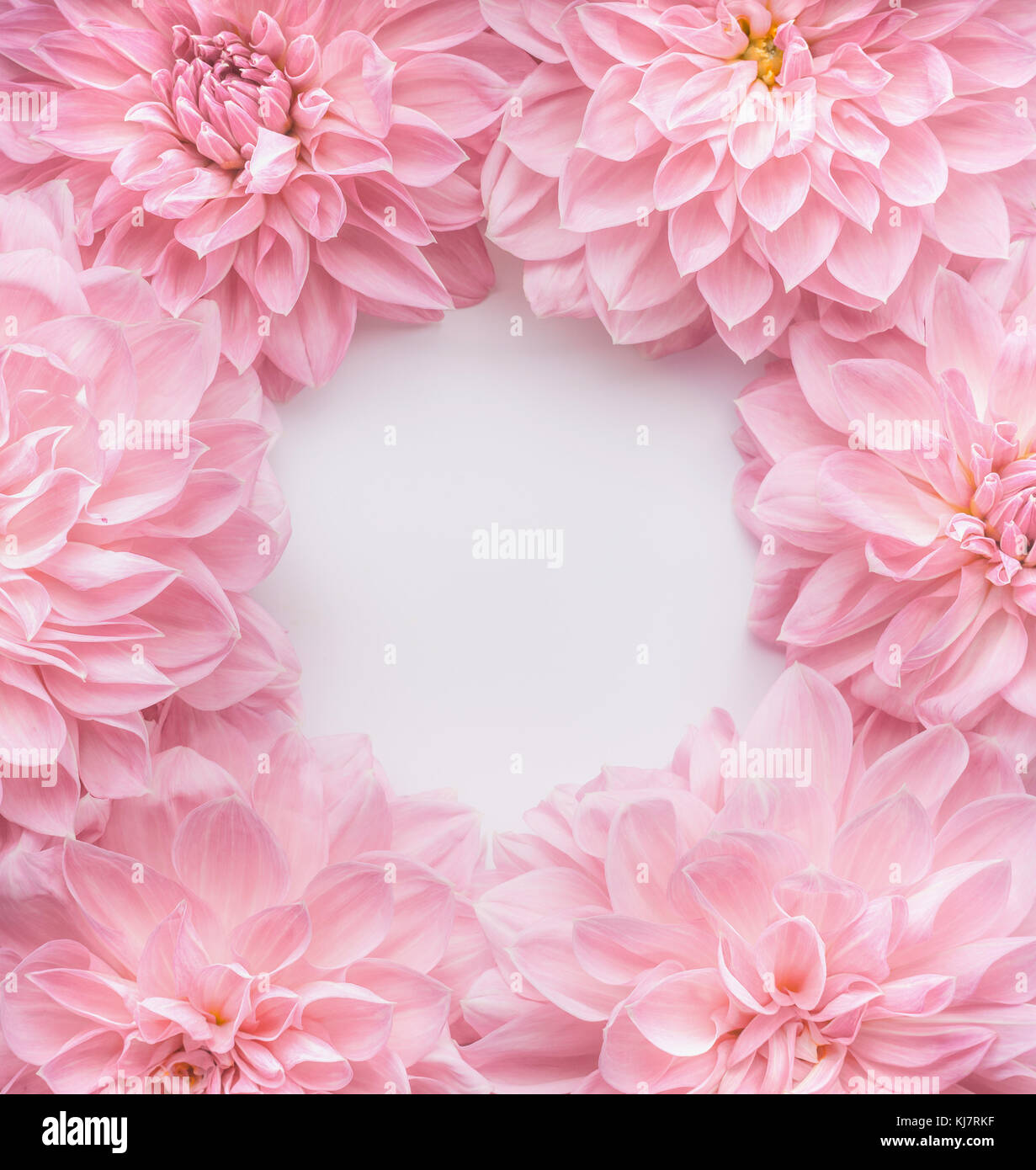Kreative Pastell Rosa Blumen Rahmen Ansicht Von Oben Layout Oder