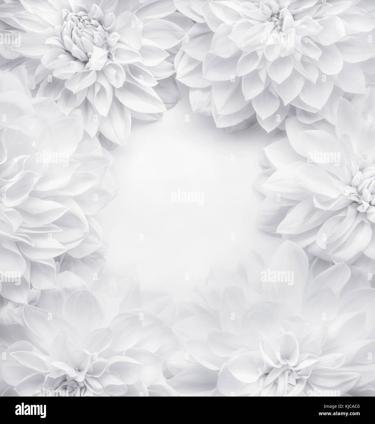 kreative wei e blumen rahmen hintergrund florales muster oder layouts f r gru karte der. Black Bedroom Furniture Sets. Home Design Ideas