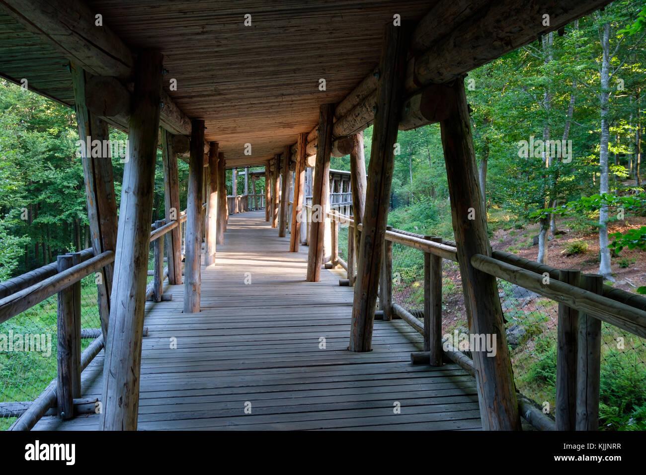 Holzbrücke über Wolfsgehege, Tier-Freigelände im Nationalparkzentrum Falkenstein, Bayerischer Wald, Stockbild