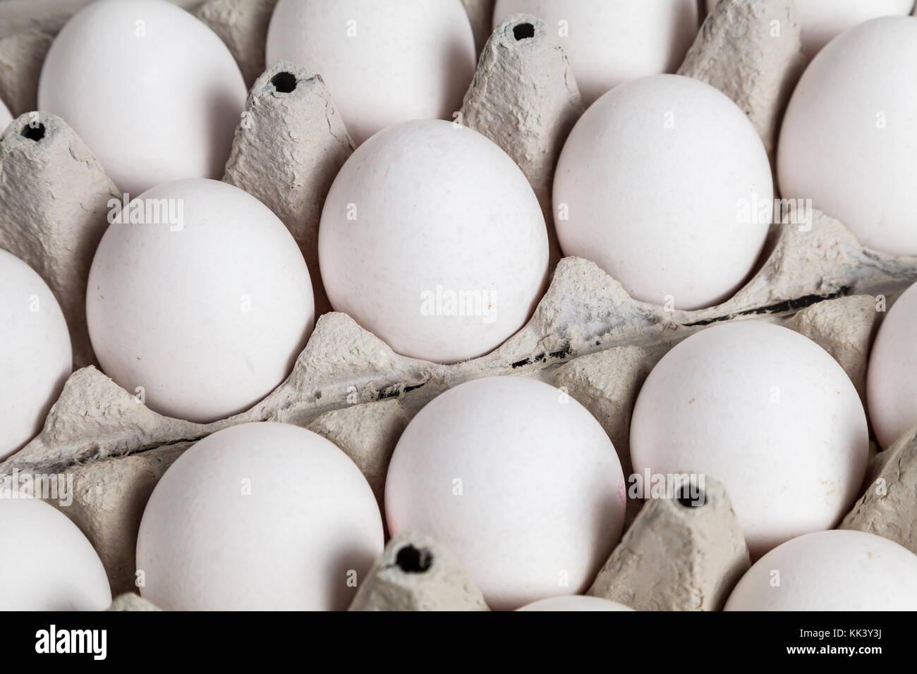 Eiern in einer box Stockfoto