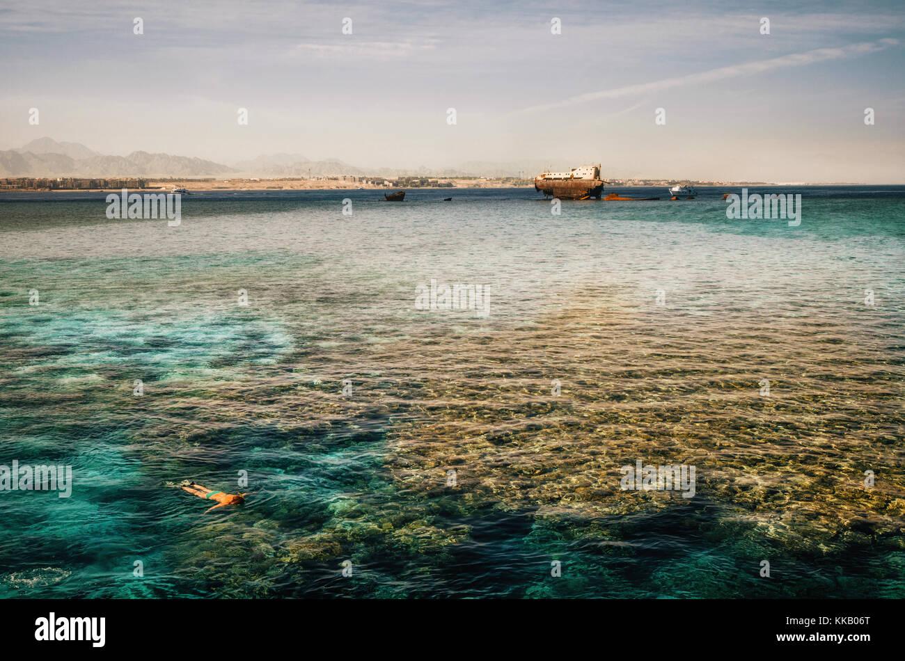 Frau Schnorcheln neben der Schiffbruch an der Gordon Reef in der Straße von Tiran, im Roten Meer, in der Nähe Stockbild