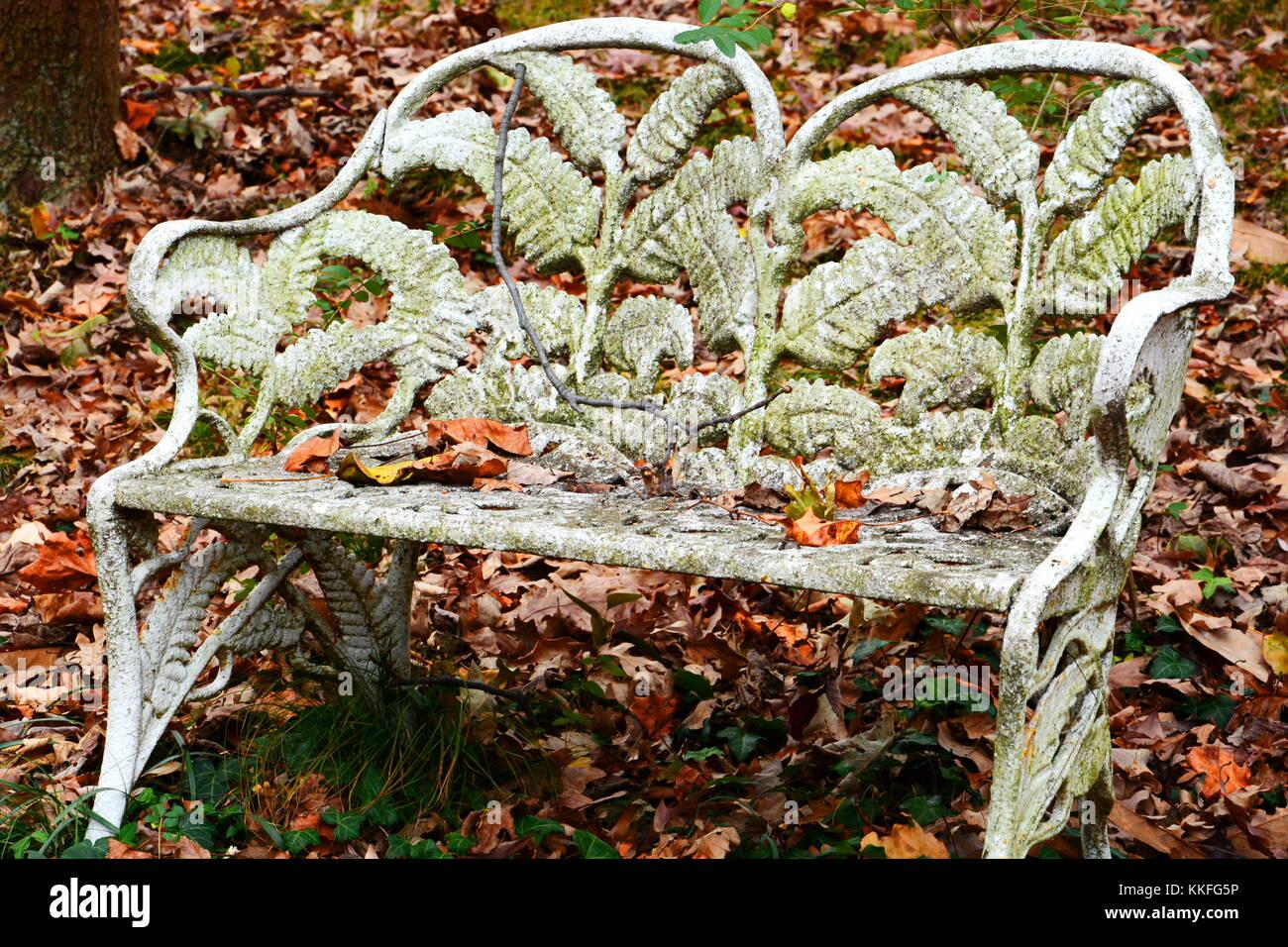Ein Verwittertes Eisen Bank von einem Teppich der bunten Blätter im Herbst umgeben bietet den perfekten Ort Stockbild